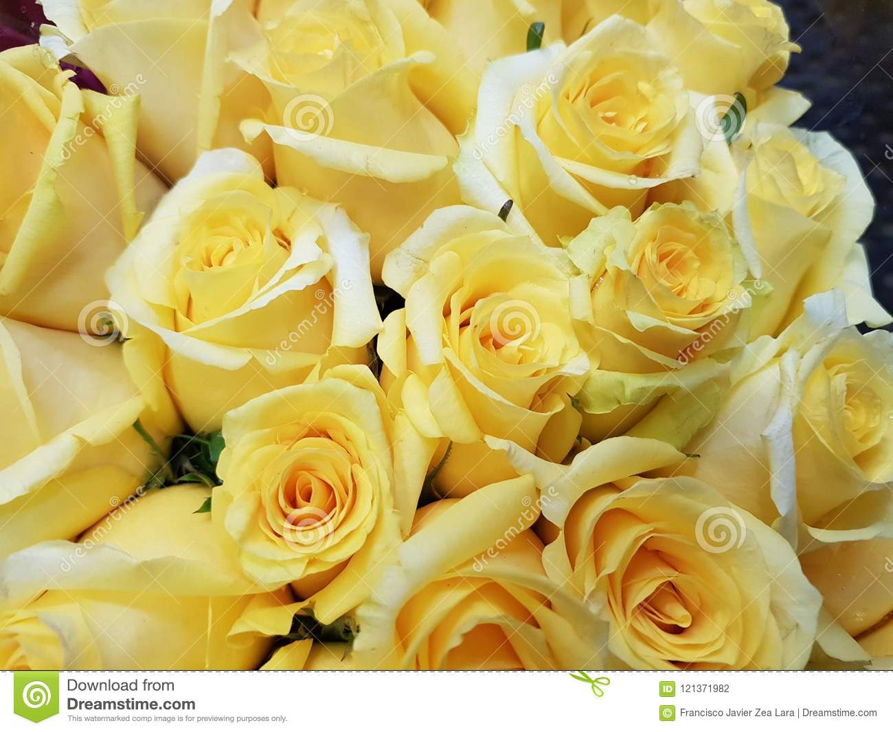 Yellow Rose Flowers In A Floral Bouquet Background And Texture