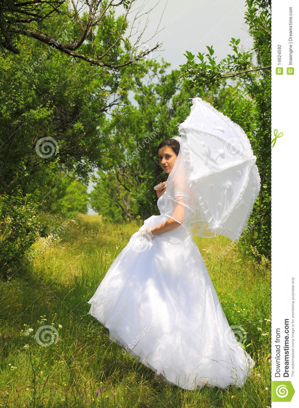 Nature Bride Stock Photography