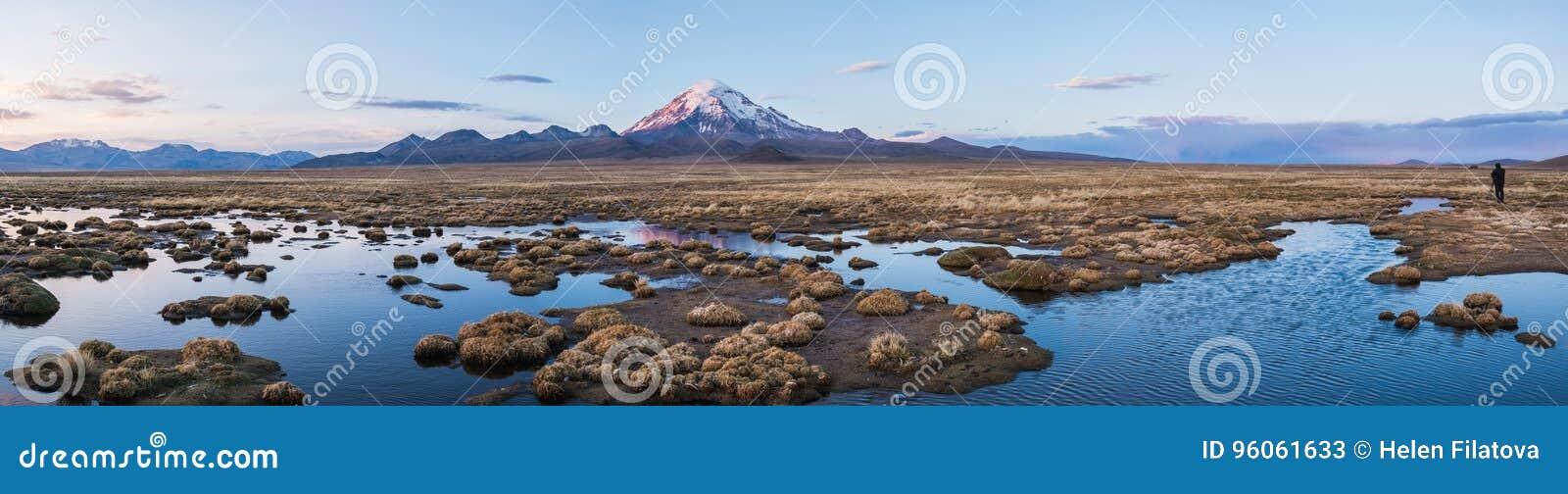 Nature d Altiplano