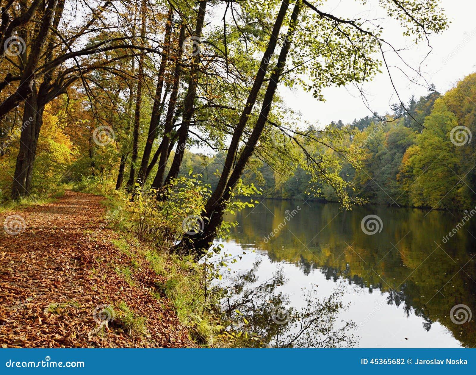 Nature d automne