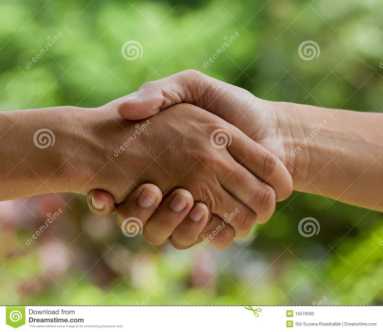 Download Nature deal stock photo. Image of guidance, innocence - 15576582