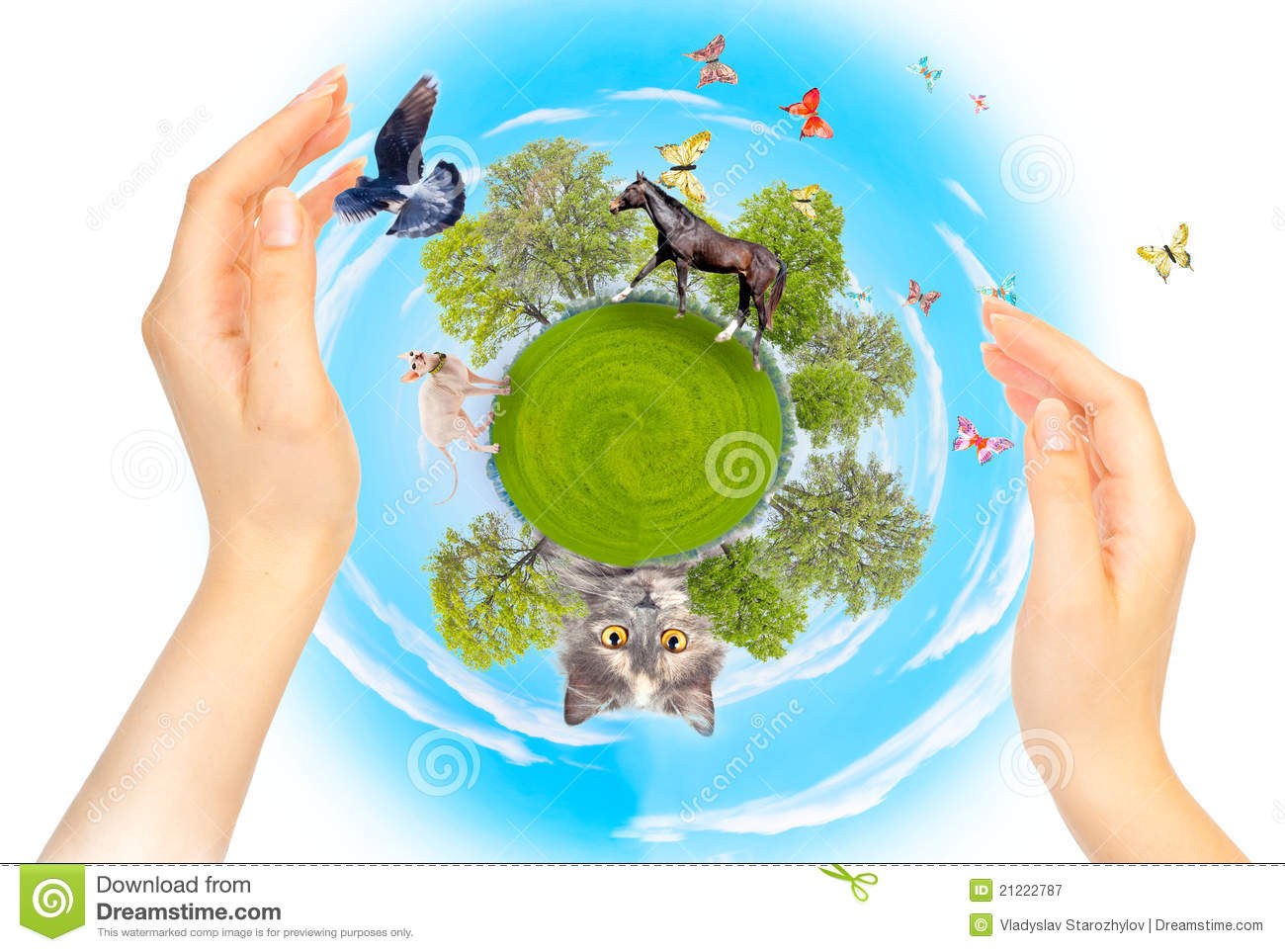 Nature Ecology And Different Animals Protection Royalty