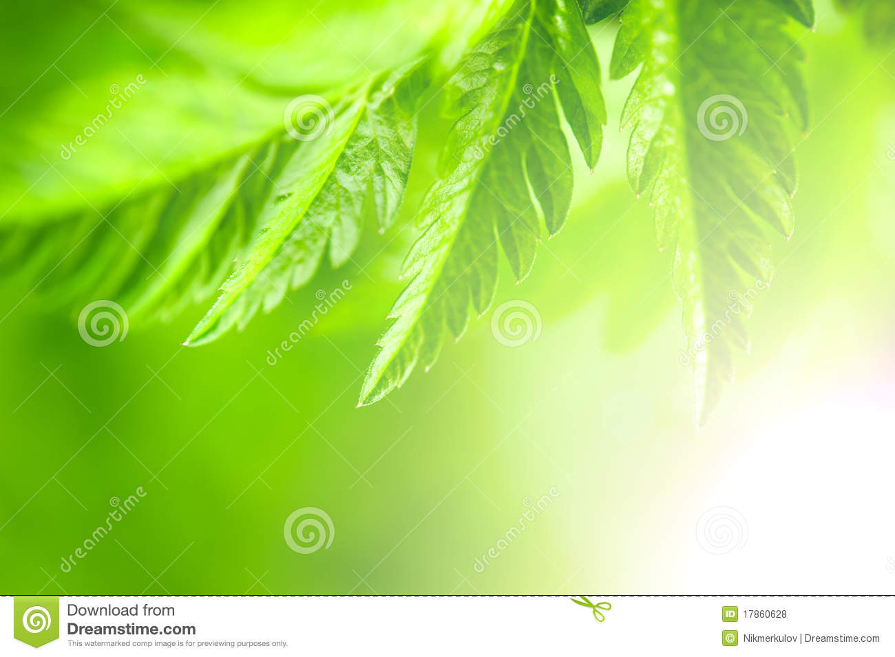 Nature Green Background Royalty Free Stock Photos - Image: 17860628