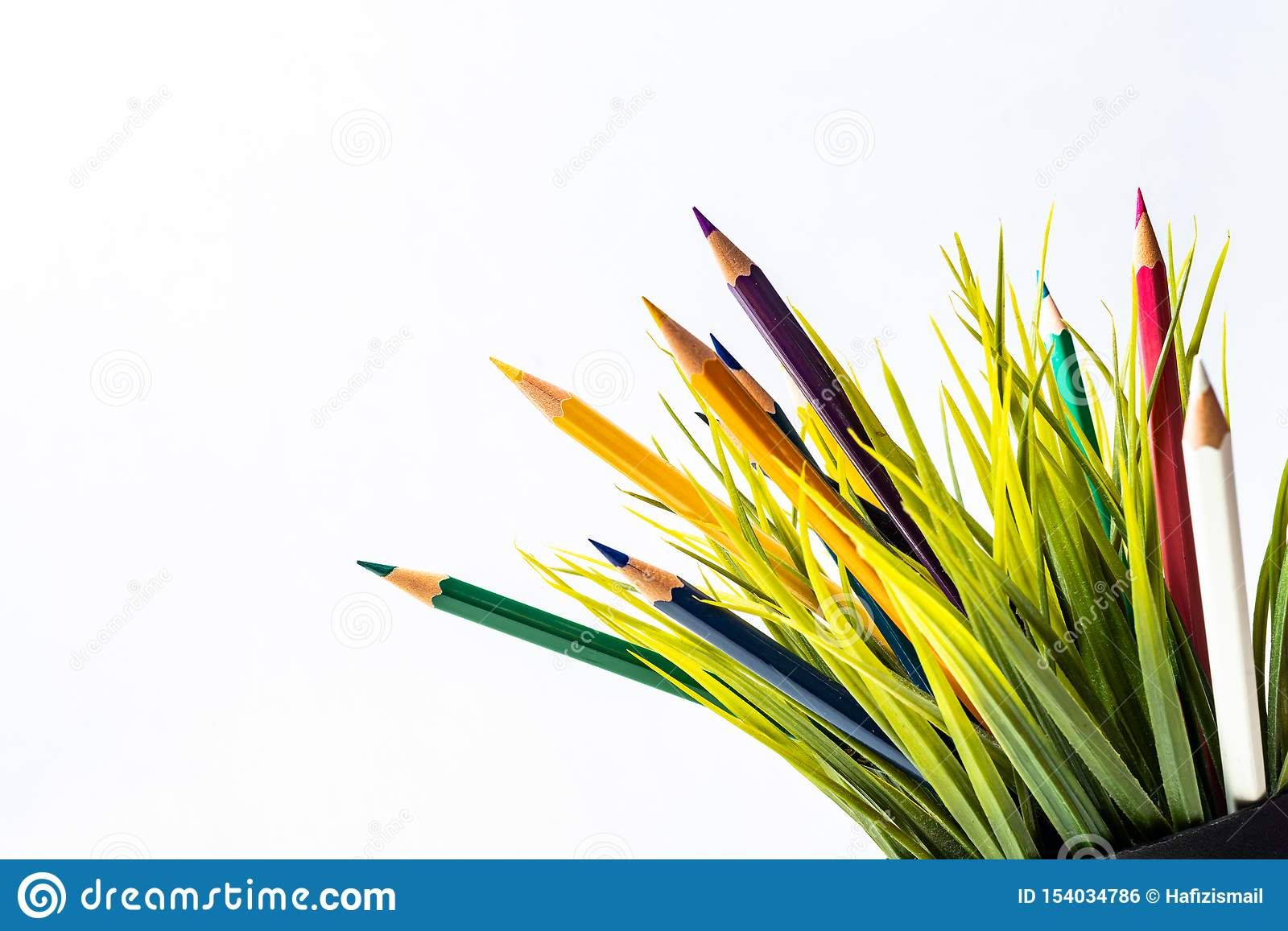 Nature Growth - Still Life Conceptual - Colored Pencils coming out of grass. Shallow depth of field, selective focusing