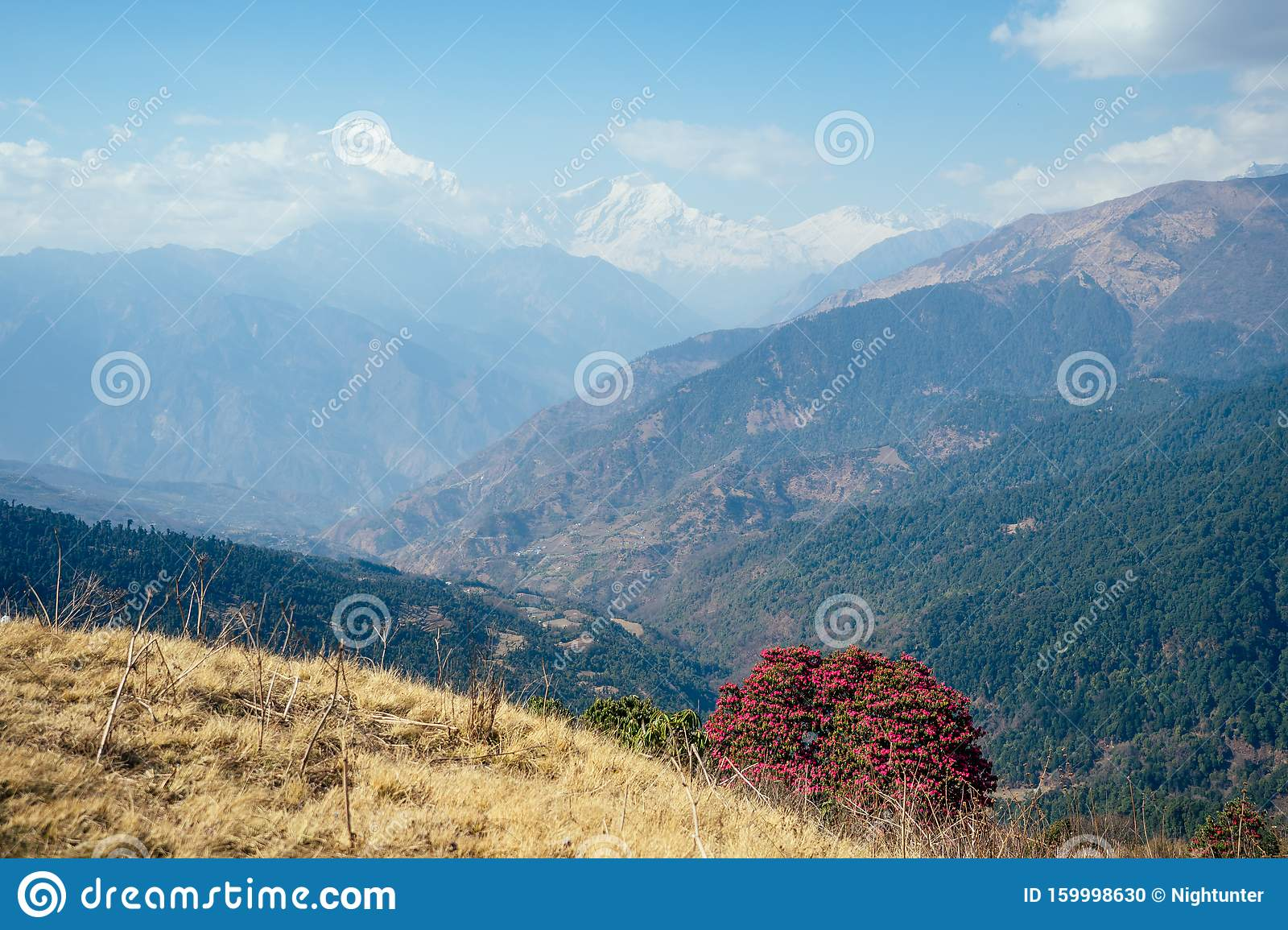 The Nature Of The Himalayas In The Spring. Mountains And ...