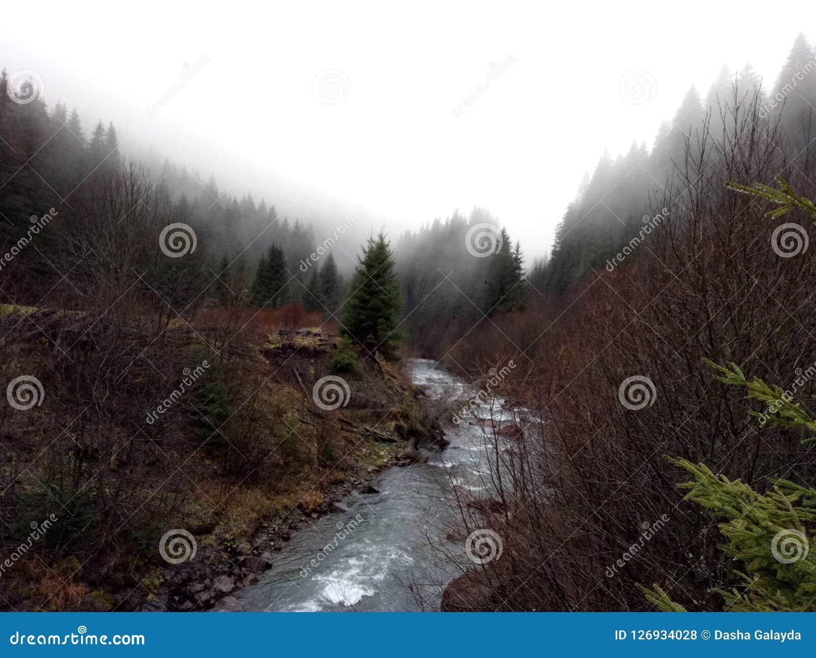 Magic of fog. Nature of Karpatian mountains in autumn Royalty Free Stock Photos