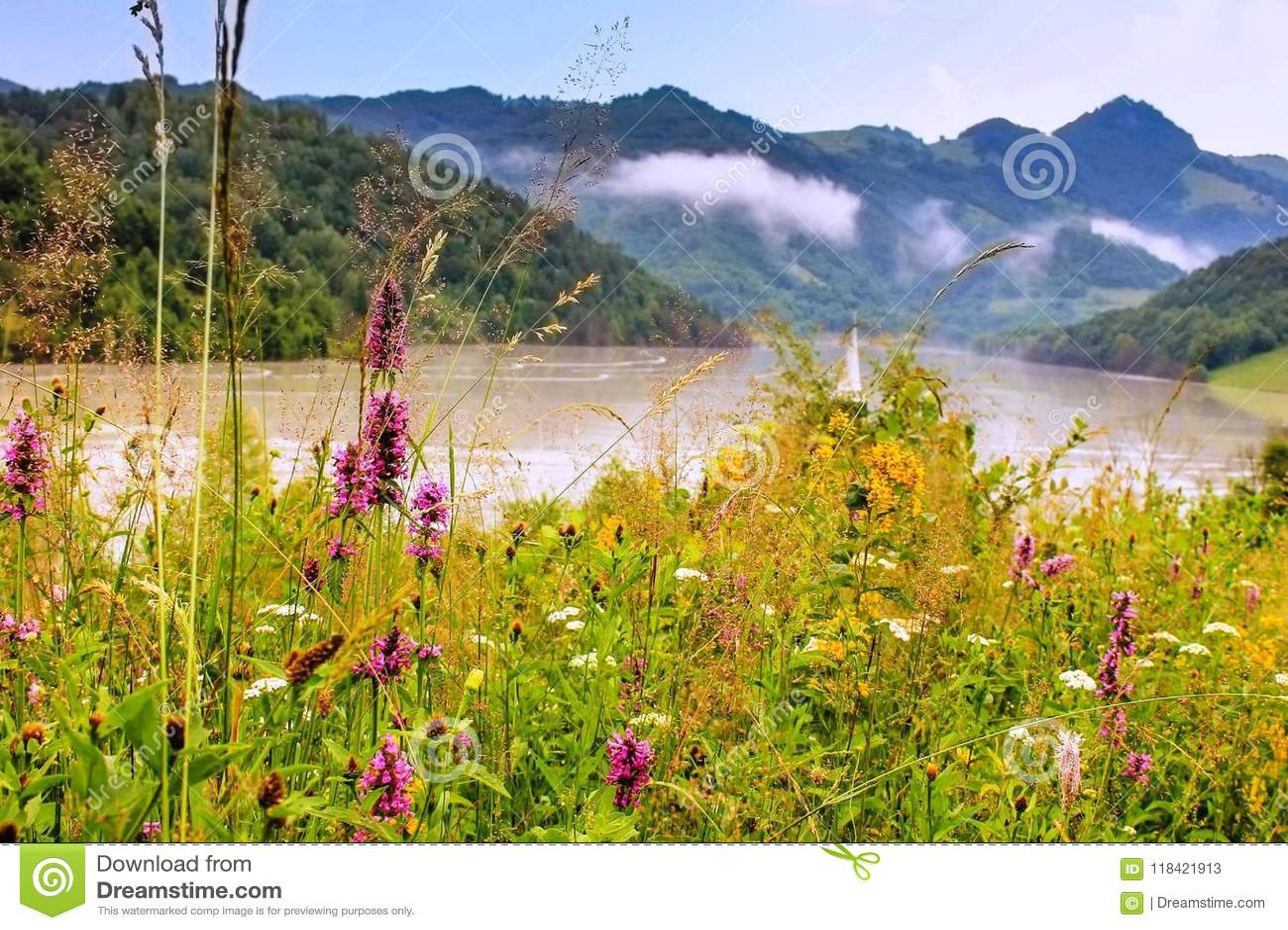 Nature Is The Art Of God Transylvania Stock Image Image Of Make