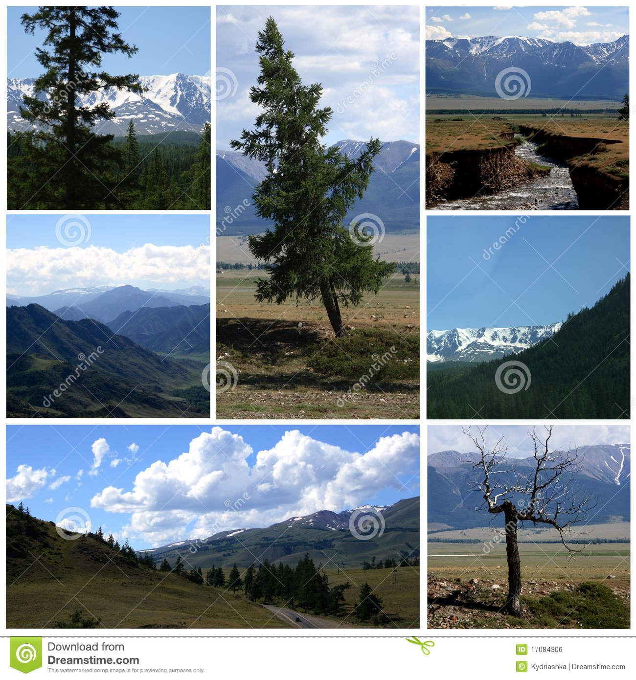 Nature Landscape Collage Royalty Free Stock Image