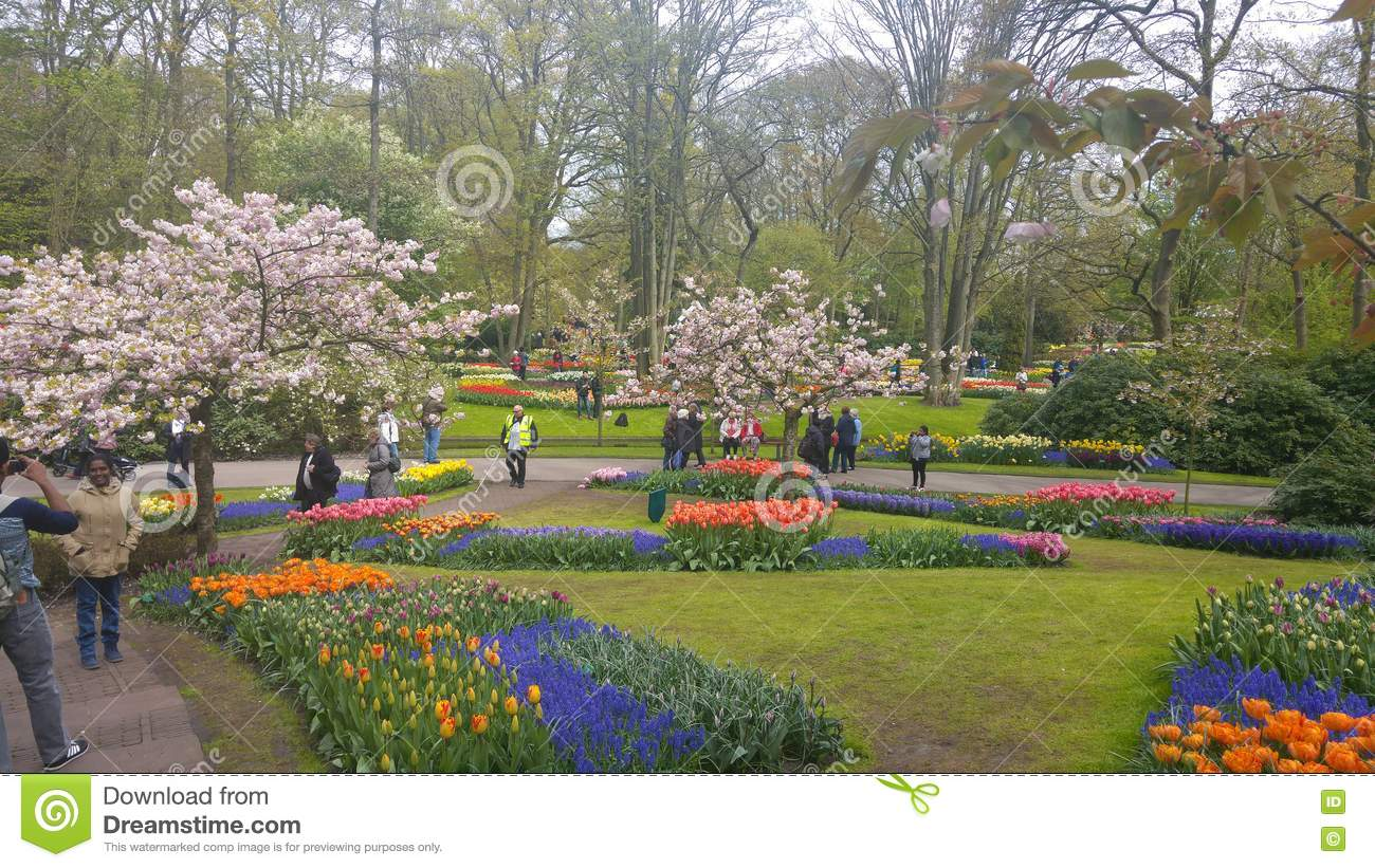 Nature Park Editorial Photo Image Of Dreamstime Nature 81033436