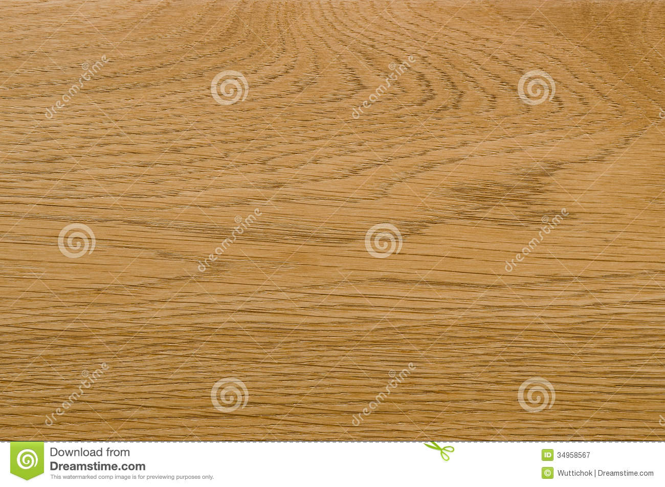 Nature Pattern Detail Of Ash Wood Background Royalty Free Stock