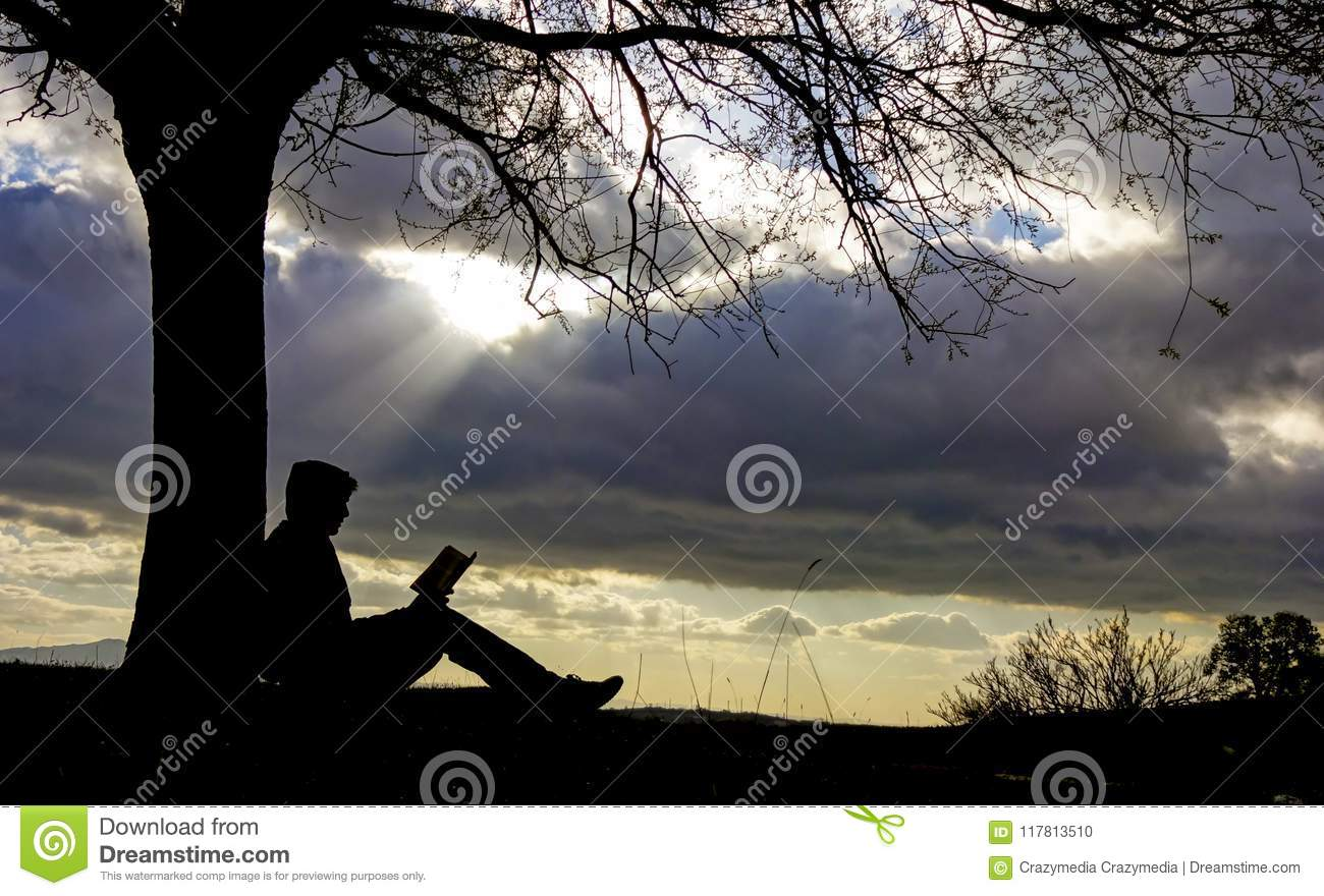 Nature And Peace To Read Books Reading Stock Photo Image