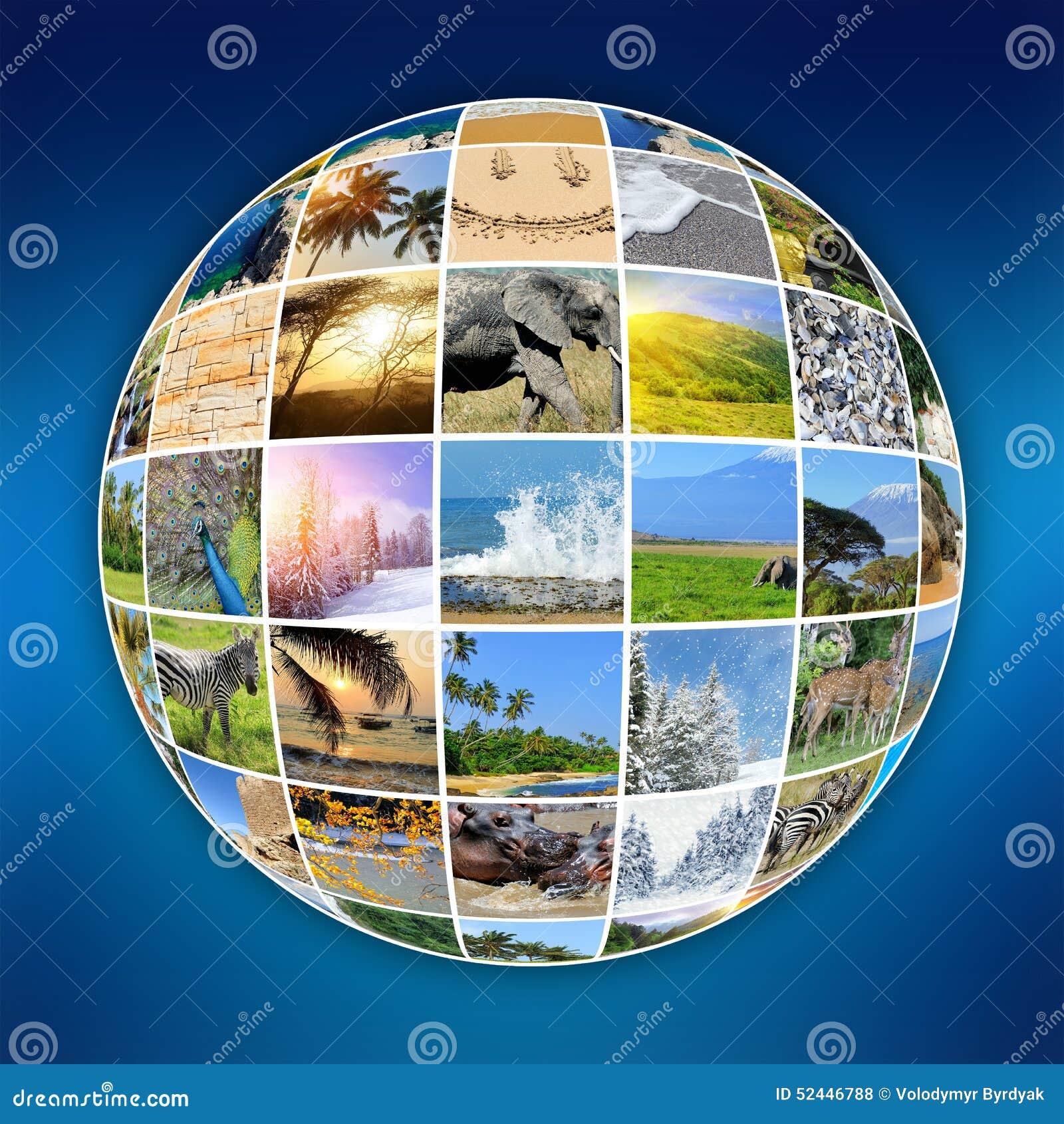 Nature Photo (animal, Landscape, Beach) Stock Photo