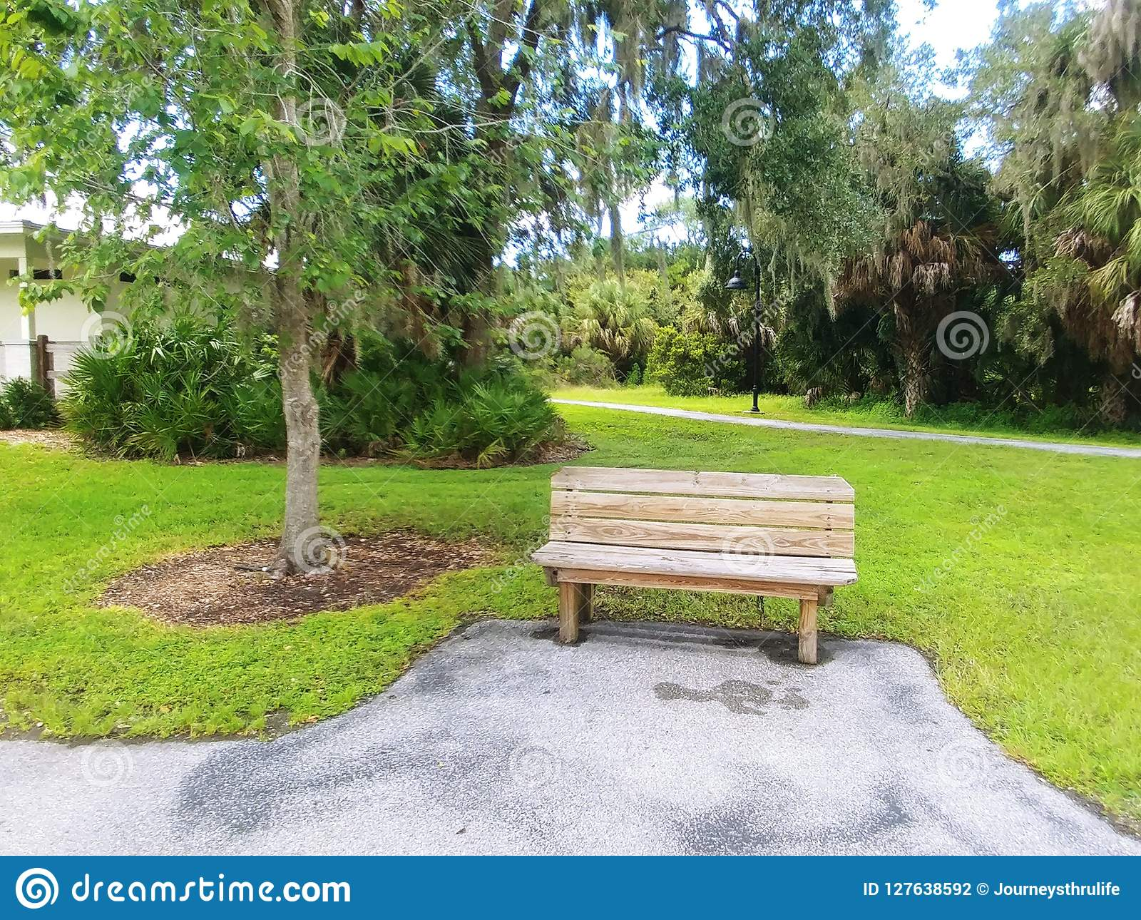 Outstanding Wooden Park Bench In A Quiet City Park Stock Photo Image Machost Co Dining Chair Design Ideas Machostcouk
