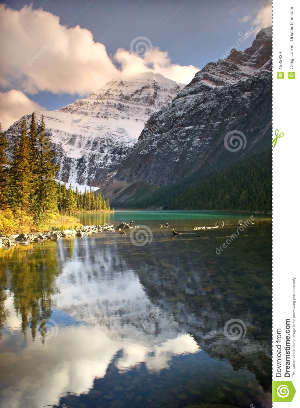 Nature s reflection s