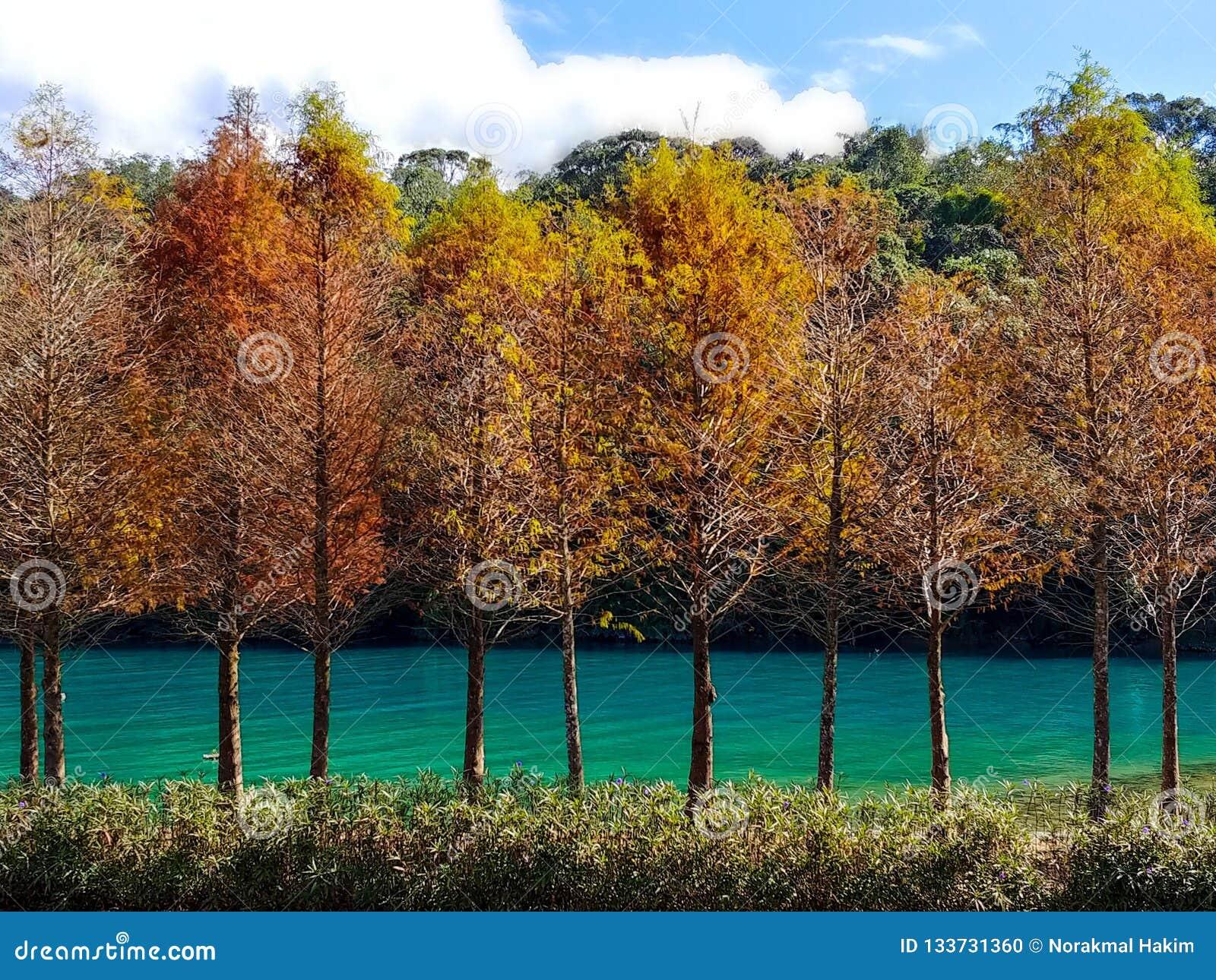 Nature' spettro di colori di s