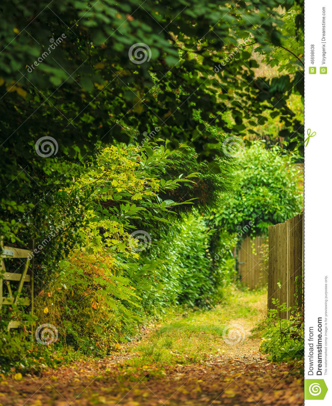 Nature Summer Landscape Countryside View And Rustic Gate Stock