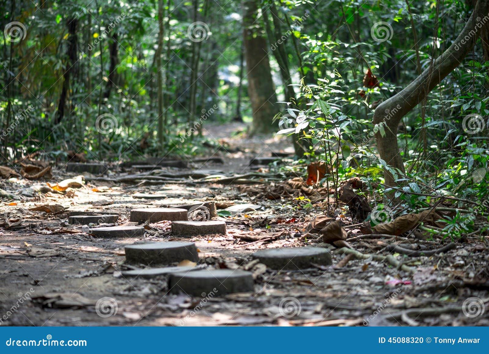 Nature Trail Stock Photo Image 45088320