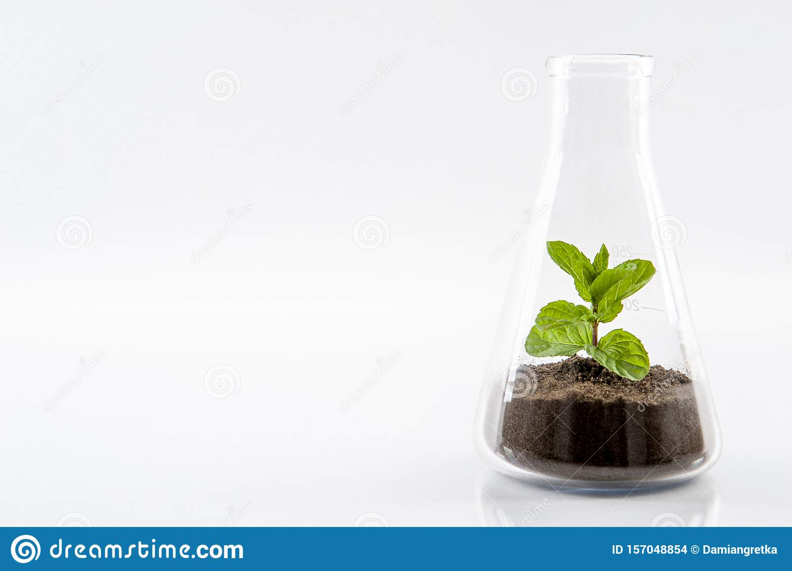 Nature under protection in the form of organic breeding in glass