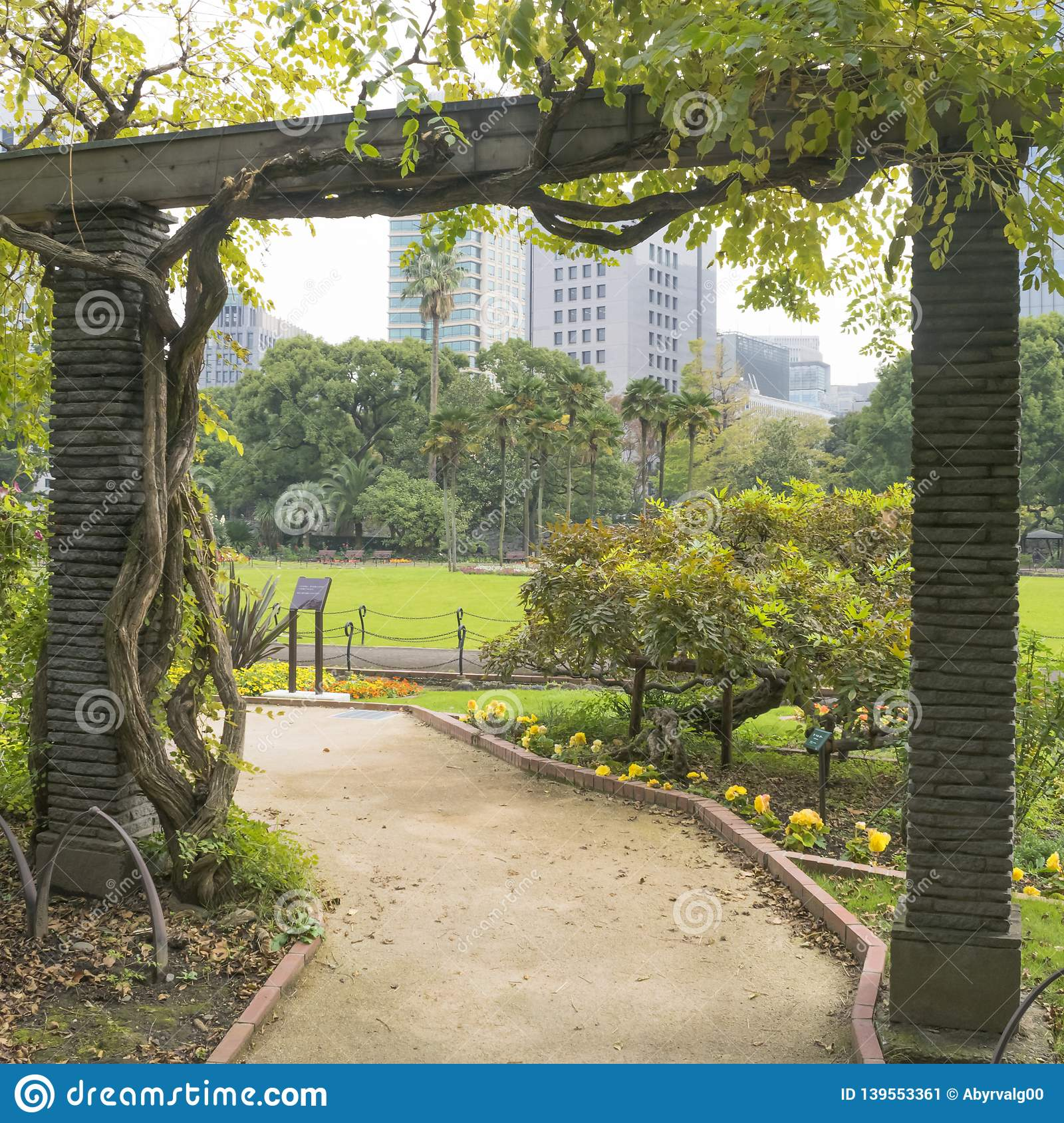 Nature or urban background with view of Hibiya park in Tokyo