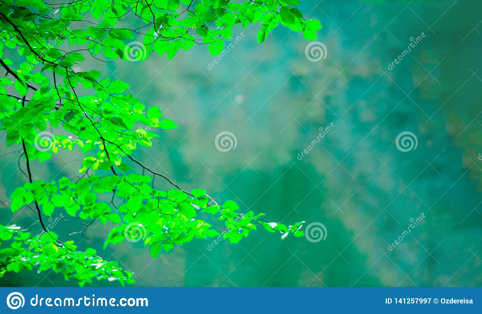 Nature View Of Green Leaf On Blurred Greenery Background