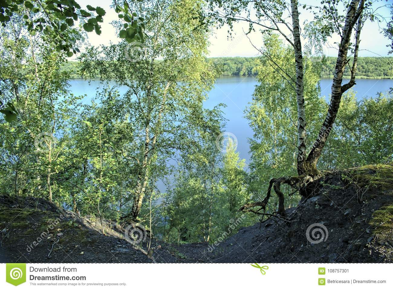 Paysage Concept nature, water, environment and paysage concept. stock image - image