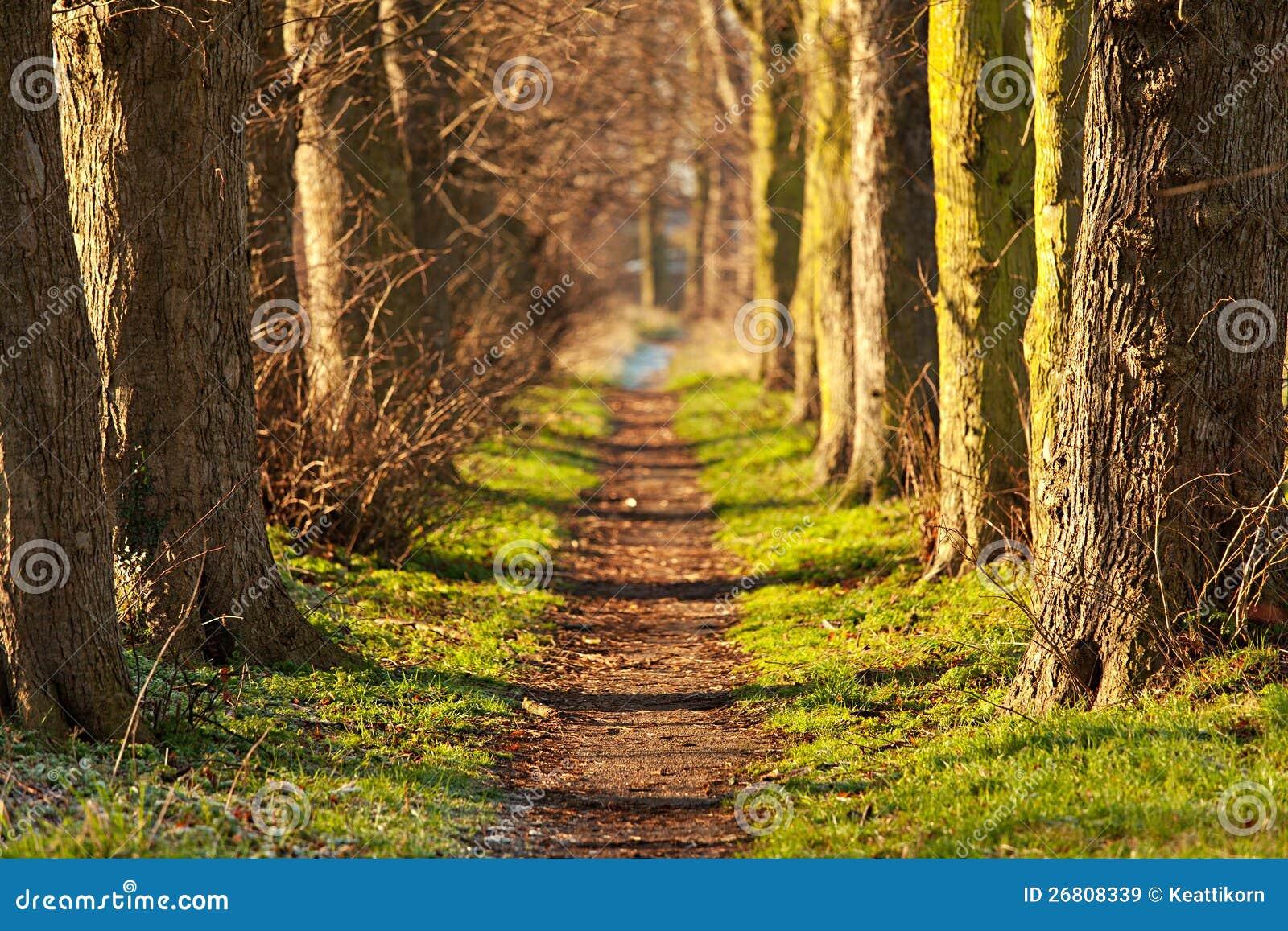 Naturen går tunnelen