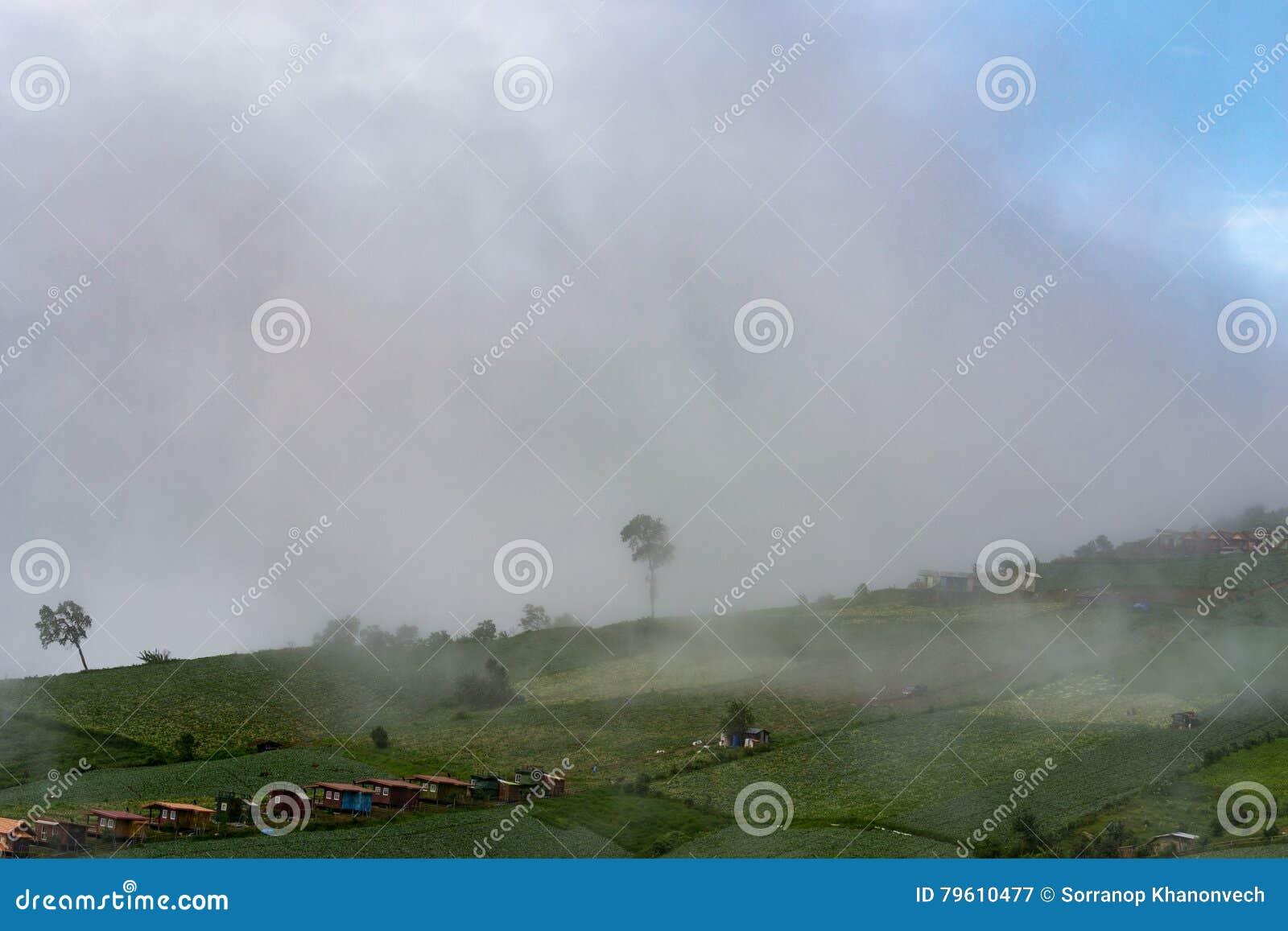 A natureza da montanha de nuvens enevoadas jejua movimento