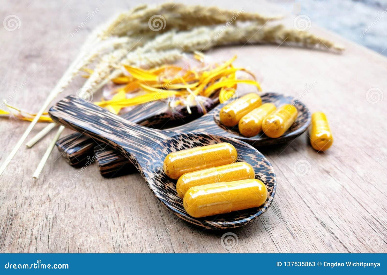 Natureza do fitoterapia/cúrcuma natural do extrato para cápsulas do amarelo da medicina da erva na colher de madeira
