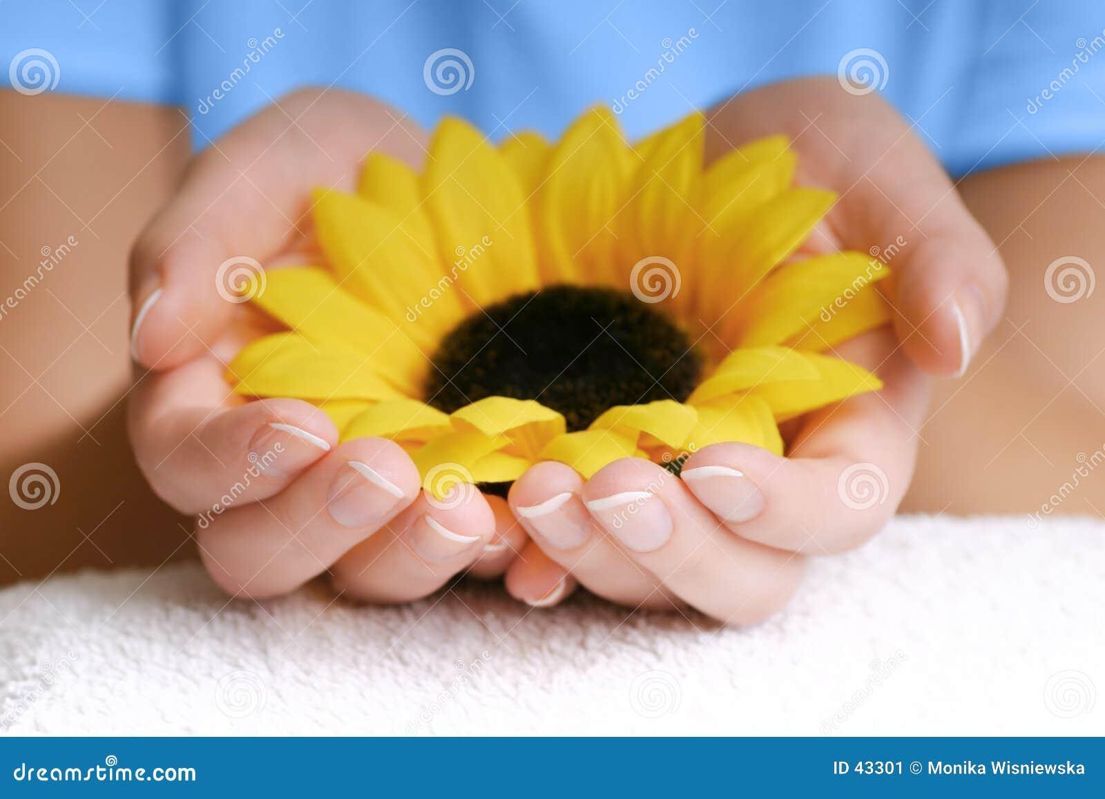 Natureza em suas mãos