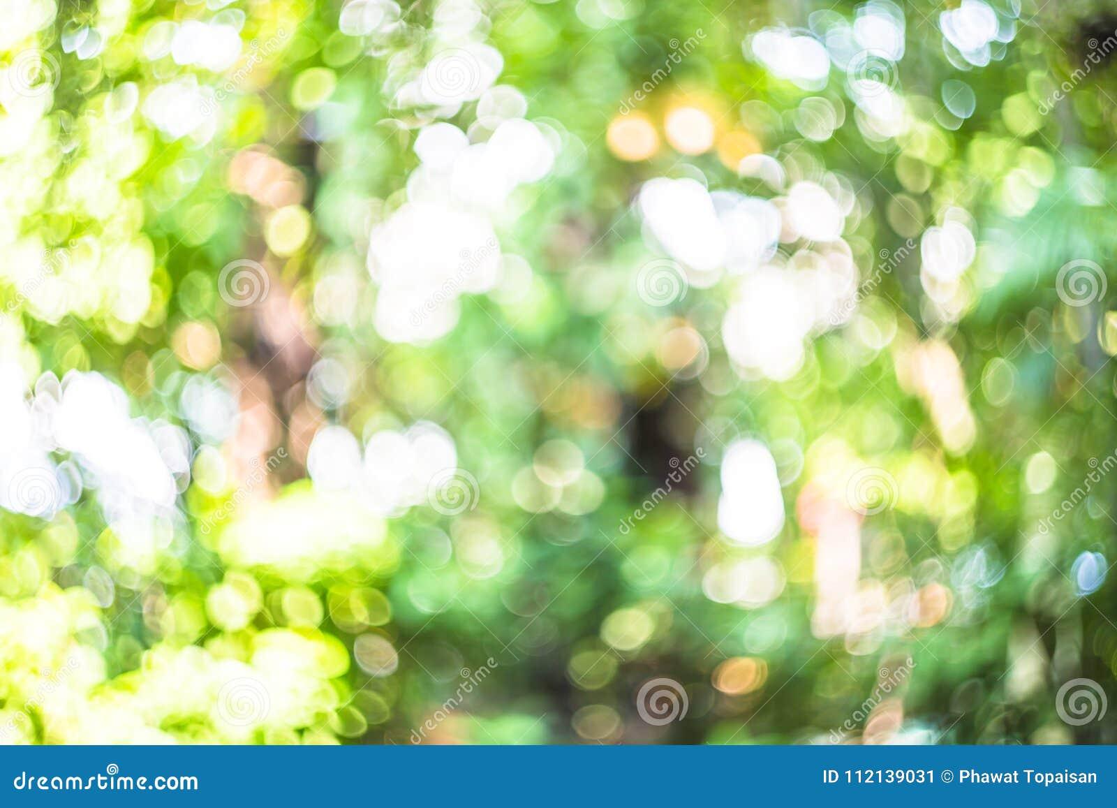 Naturlig bokehbakgrund, ny sund grön bio bakgrund med abstrakt suddig lövverk och ljust sommarsolljus