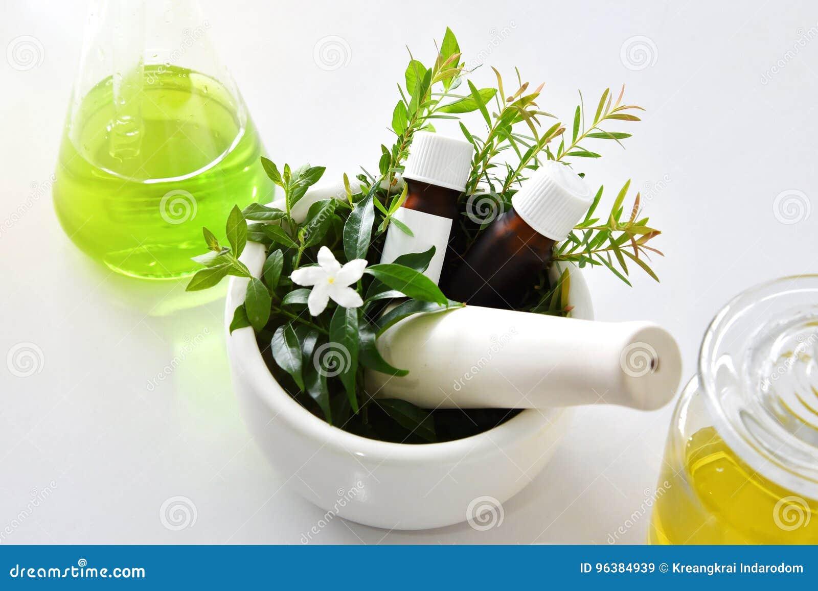 Naturlig organisk botanik och vetenskaplig glasföremål, alternativ örtmedicin, naturliga skönhetsprodukter för hudomsorg