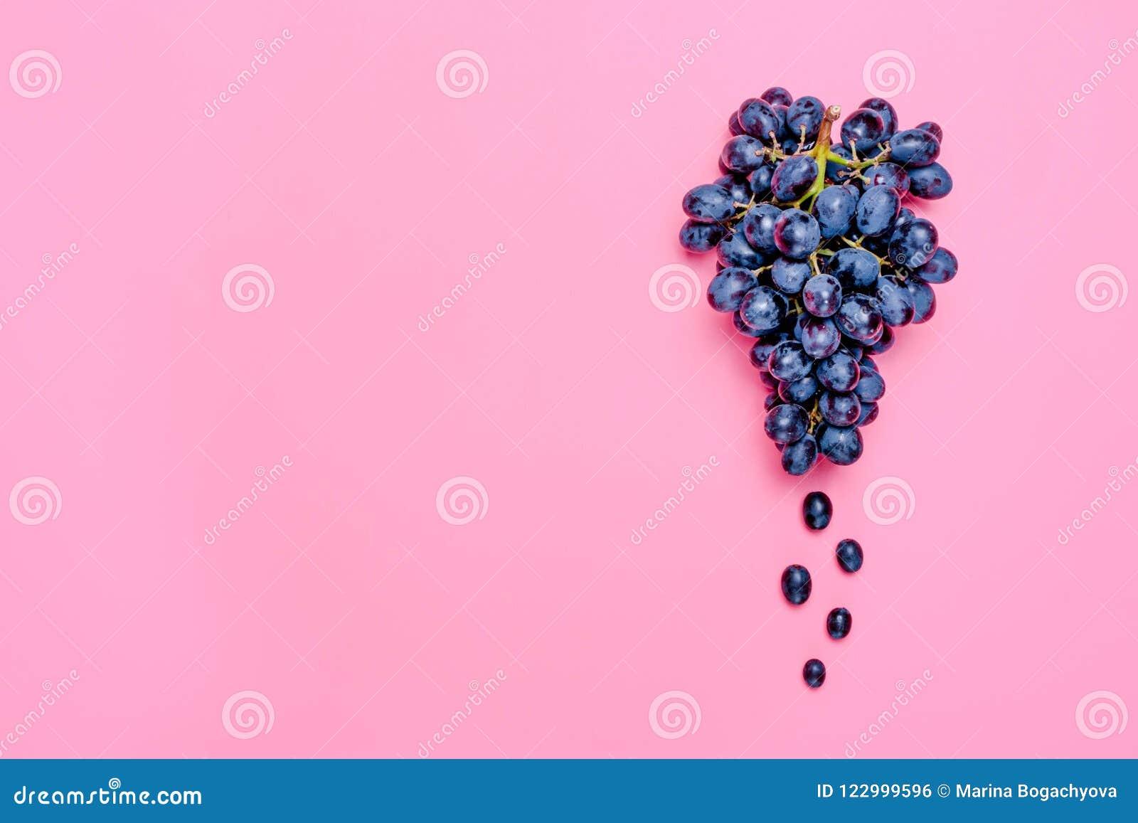 Naturliga organiska svarta saftiga druvor på en lekmanna- lägenhet för bästa sikt för bakgrund för trend rosa Lantlig stil Landsb