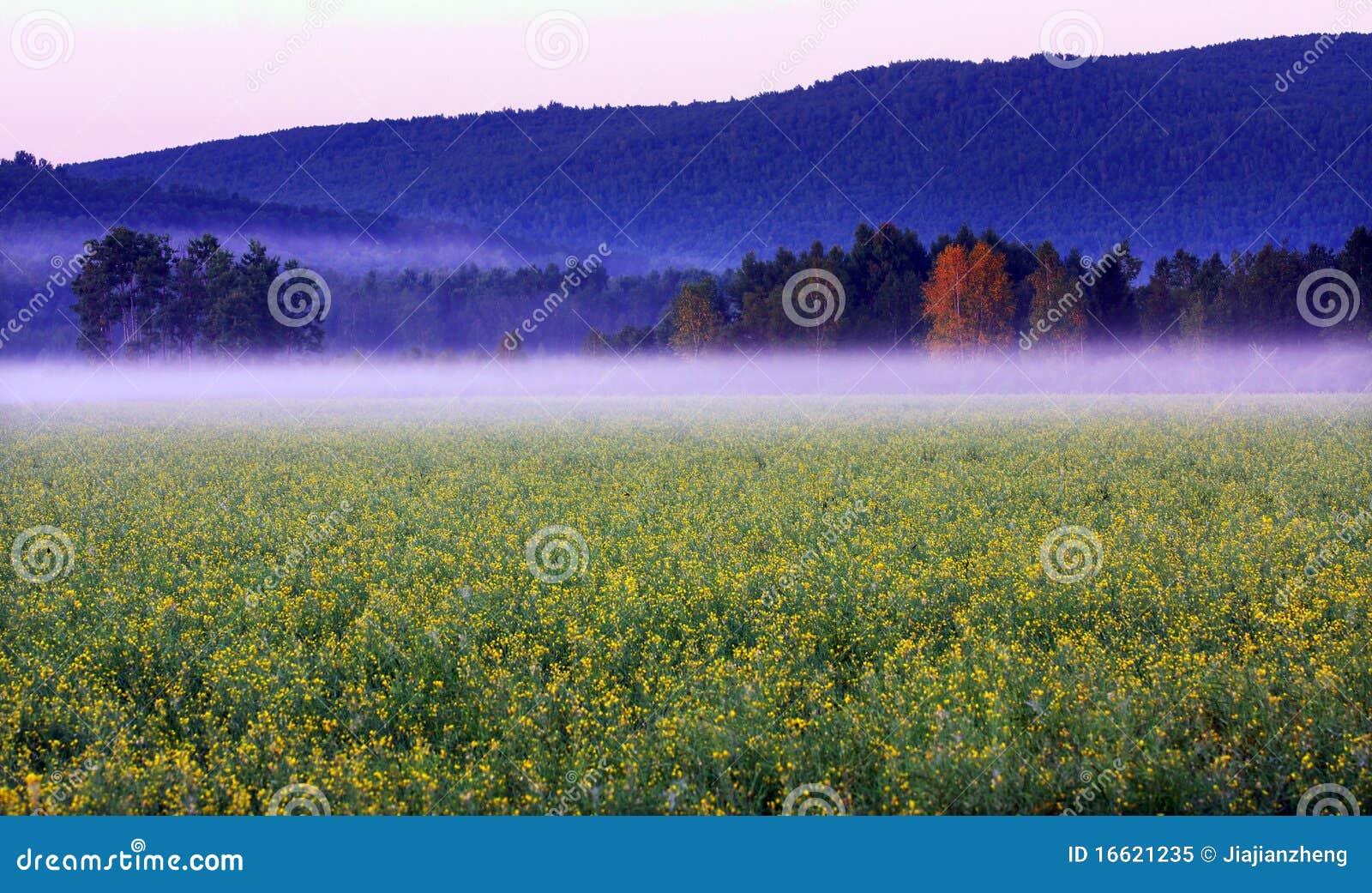 Naturligt landskap