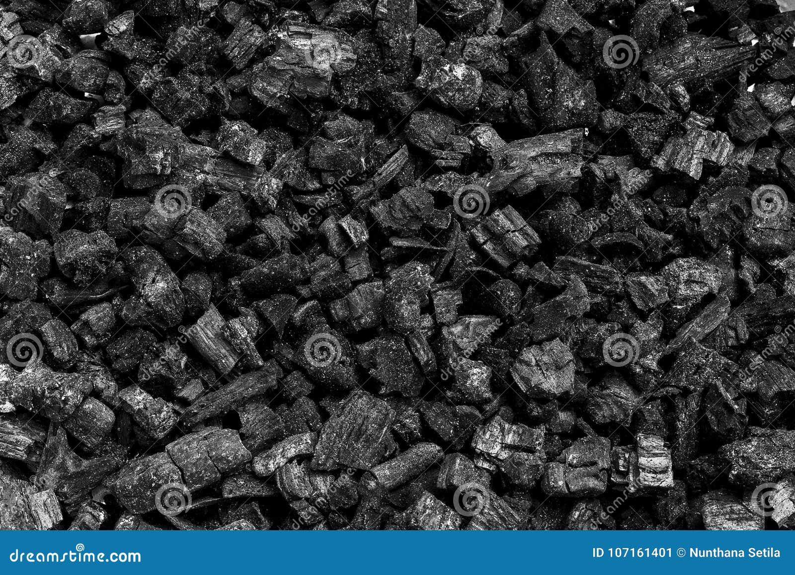 Naturligt wood kol, traditionellt kol eller hårt wood kol som används som bränsle för industriellt kol