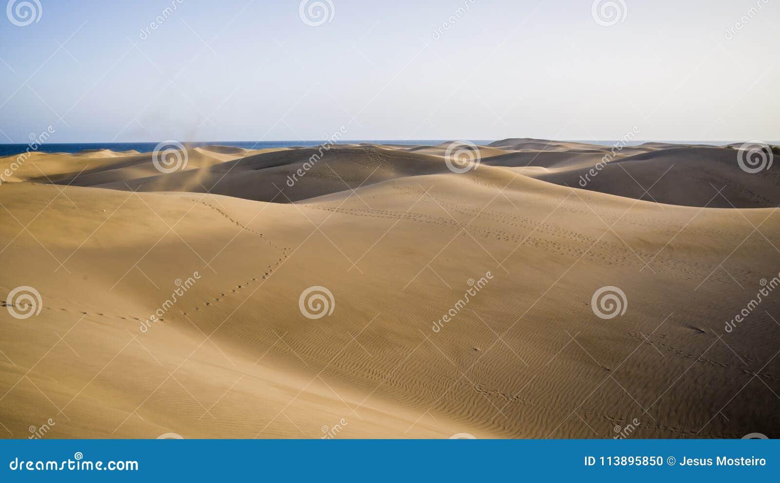 Naturpark und Dünen von Maspalomas, Insel Gran Canaria, Spanien