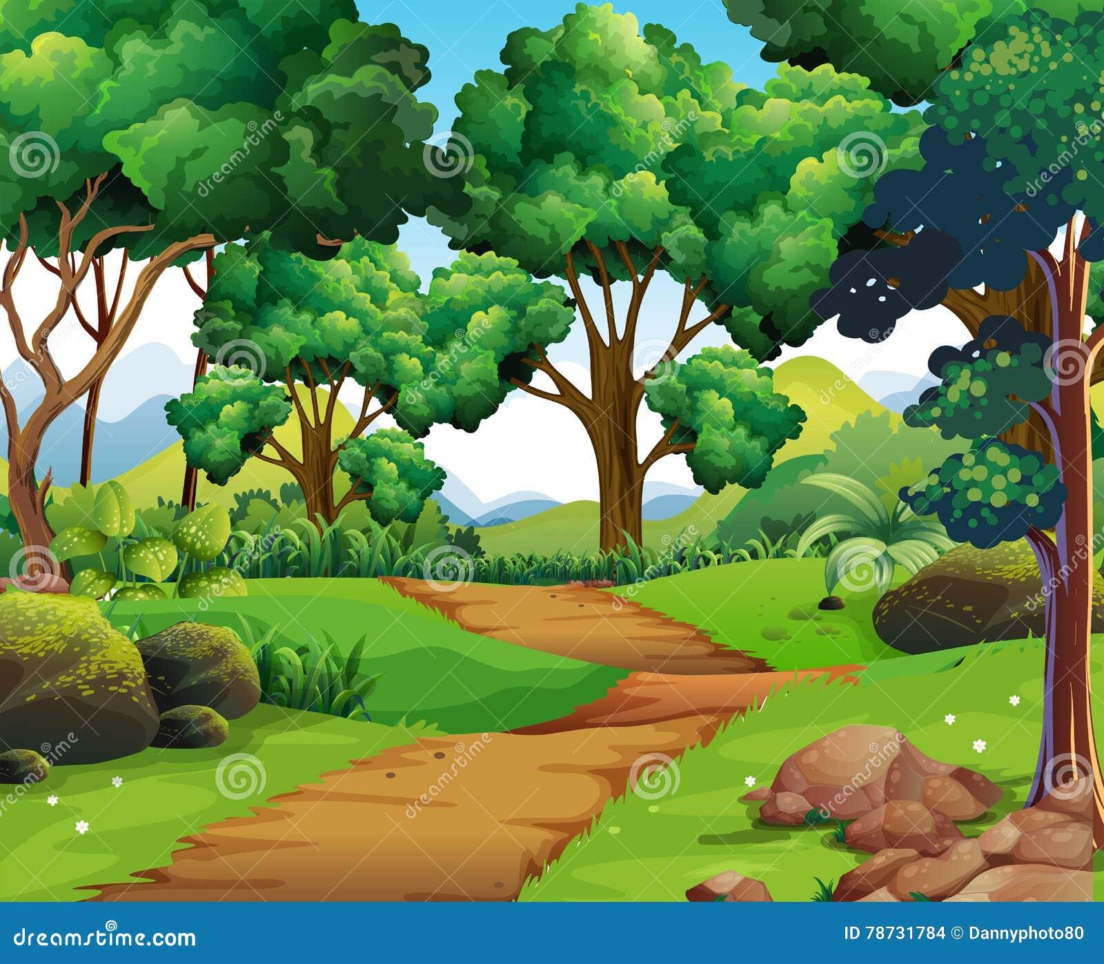 Naturplats med att fotvandra spåret och träd