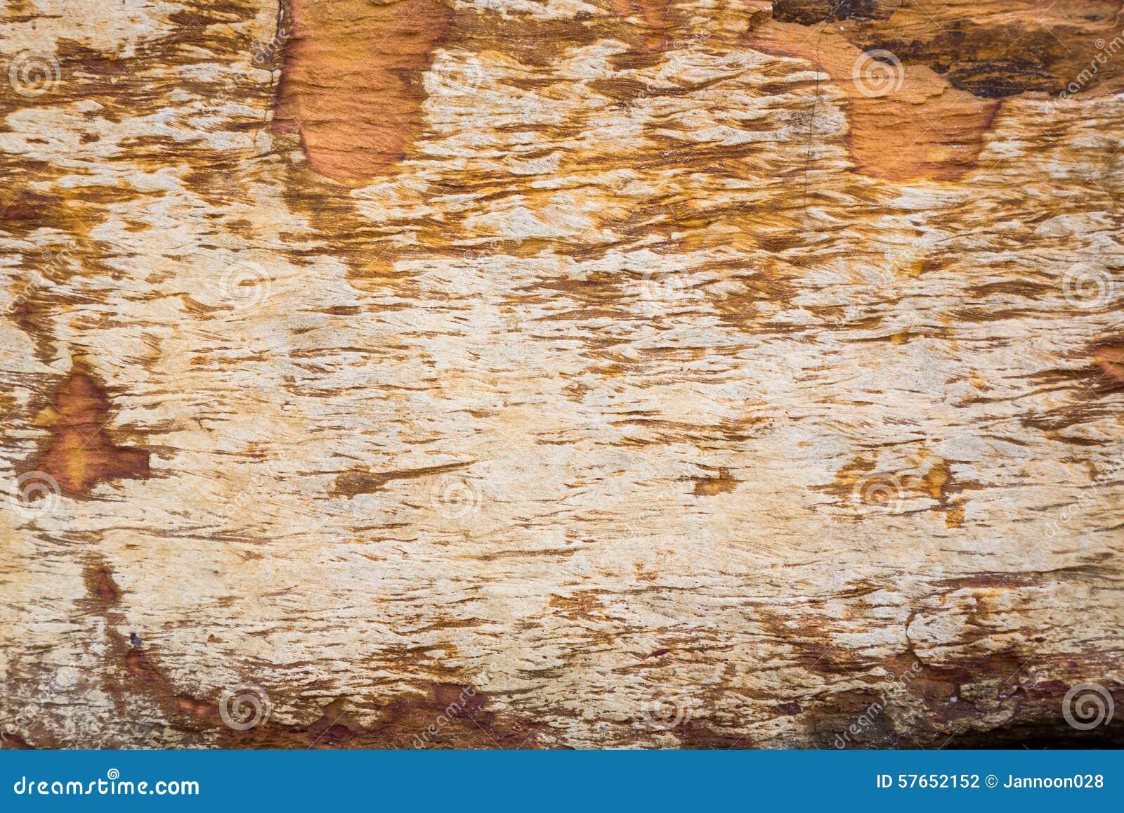 Natury Kamienna tekstura