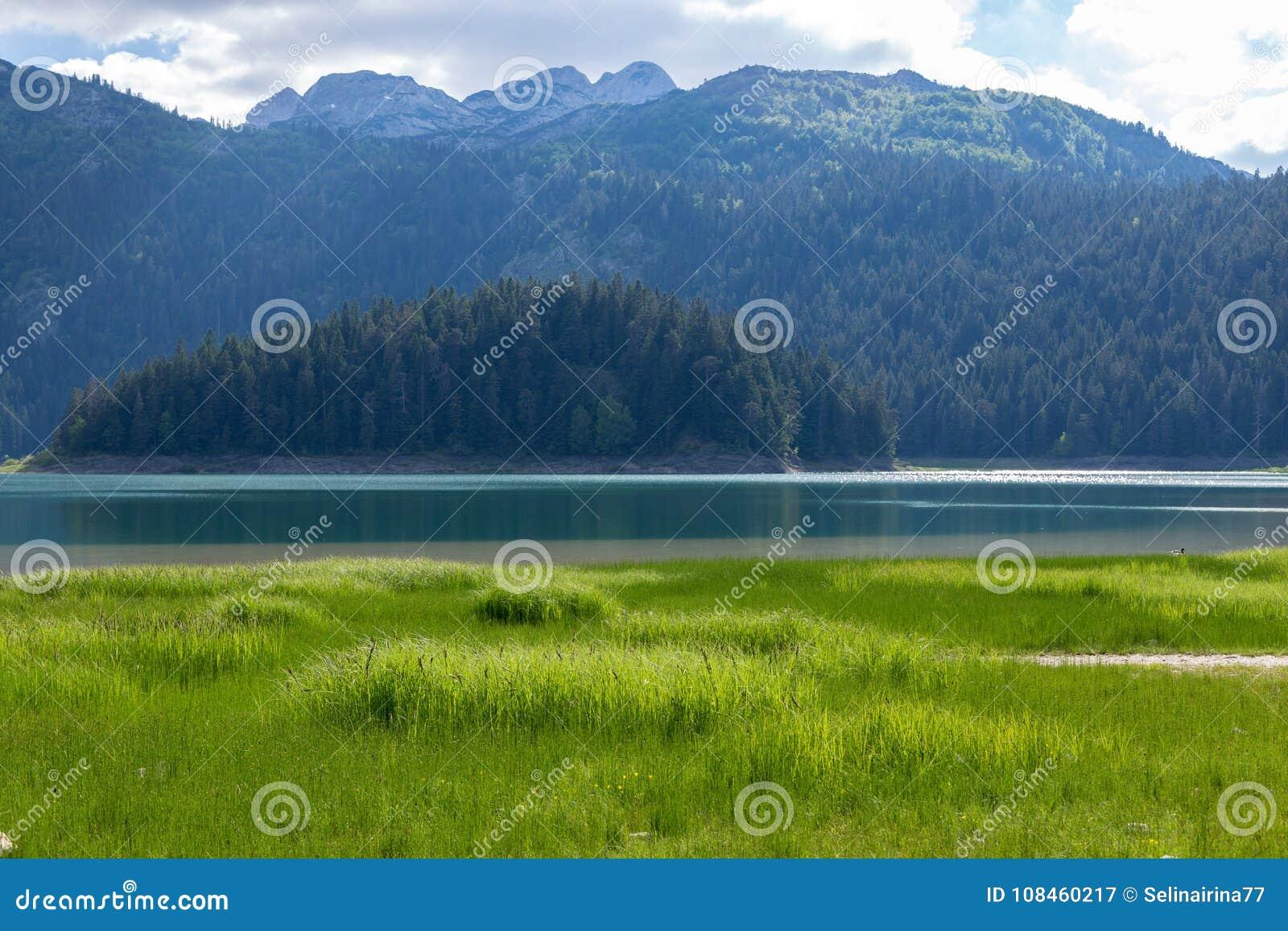 Natury podróży tło czarny jezioro w Durmitor, Montenegro -