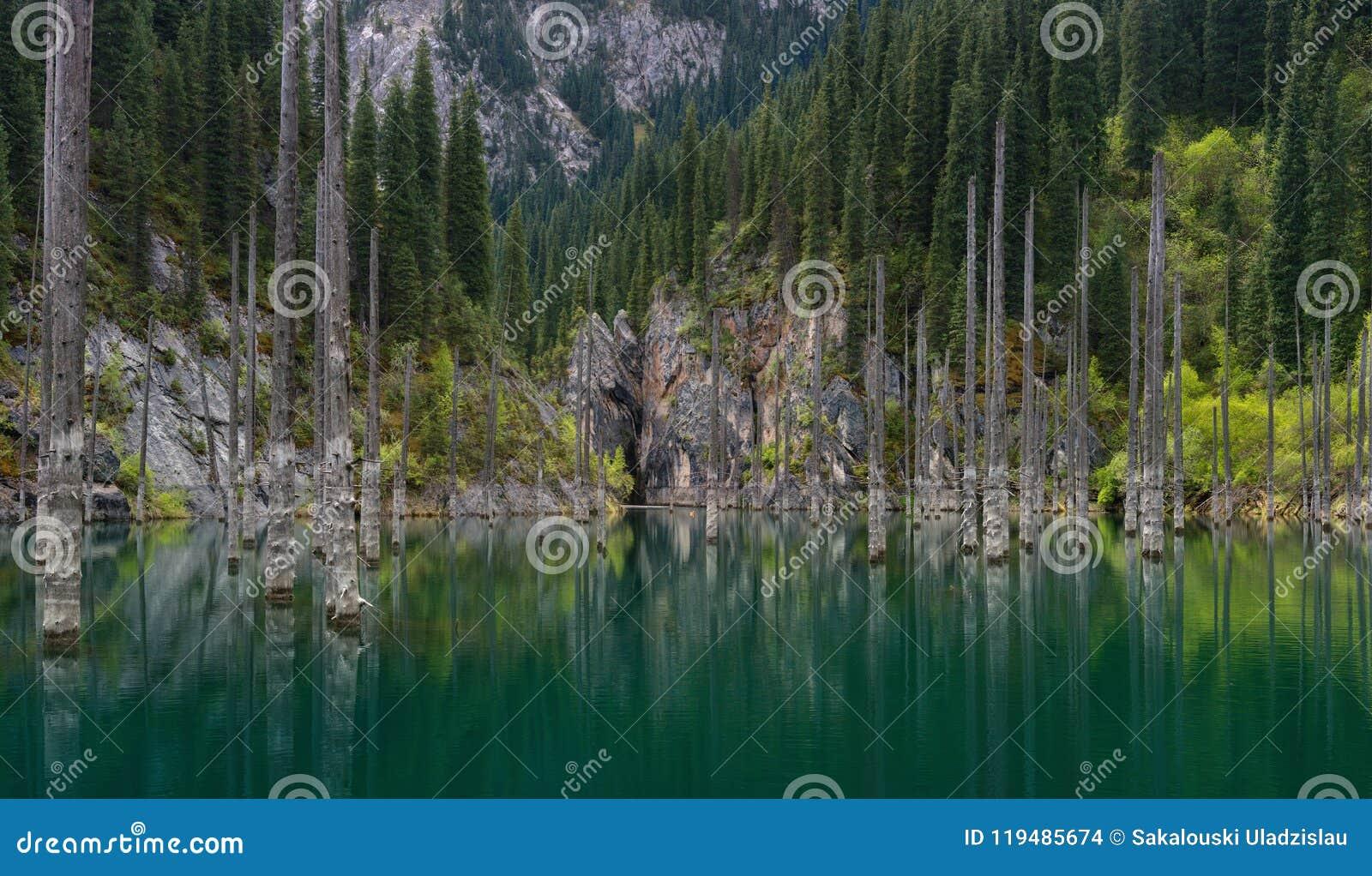 Natuurlijk Gezicht van Zuid-Kazachstan in Bergen Tyan-Shan - Alpien Kaindy-Meer ook Gekend als Berkmeer of Onderwaterforestthe