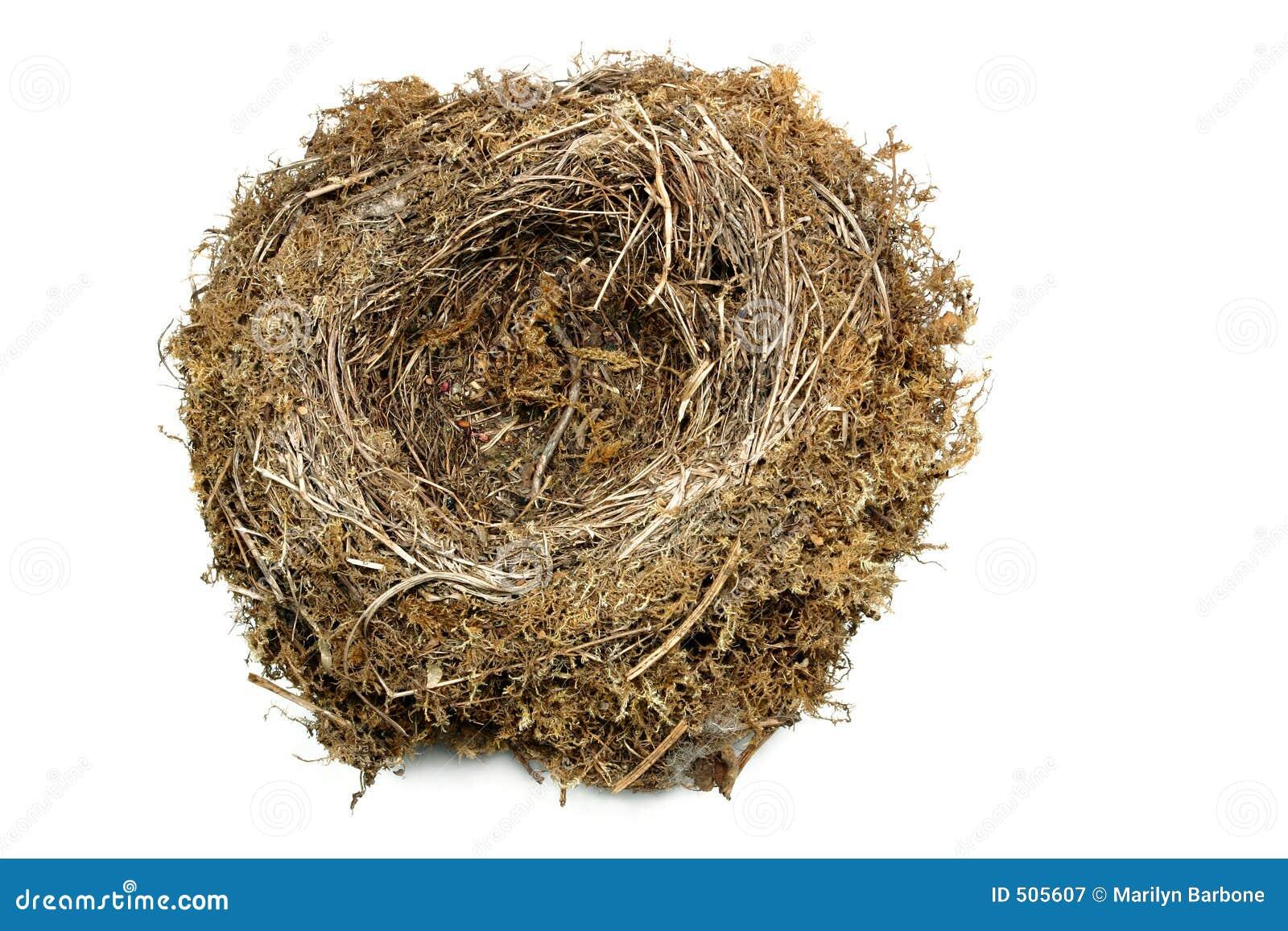 Natuurlijk Nest