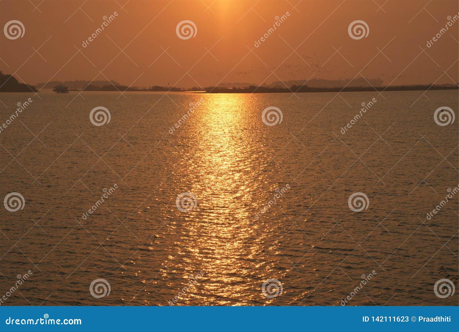 Natuurlijk van het meer bij zonsopgang