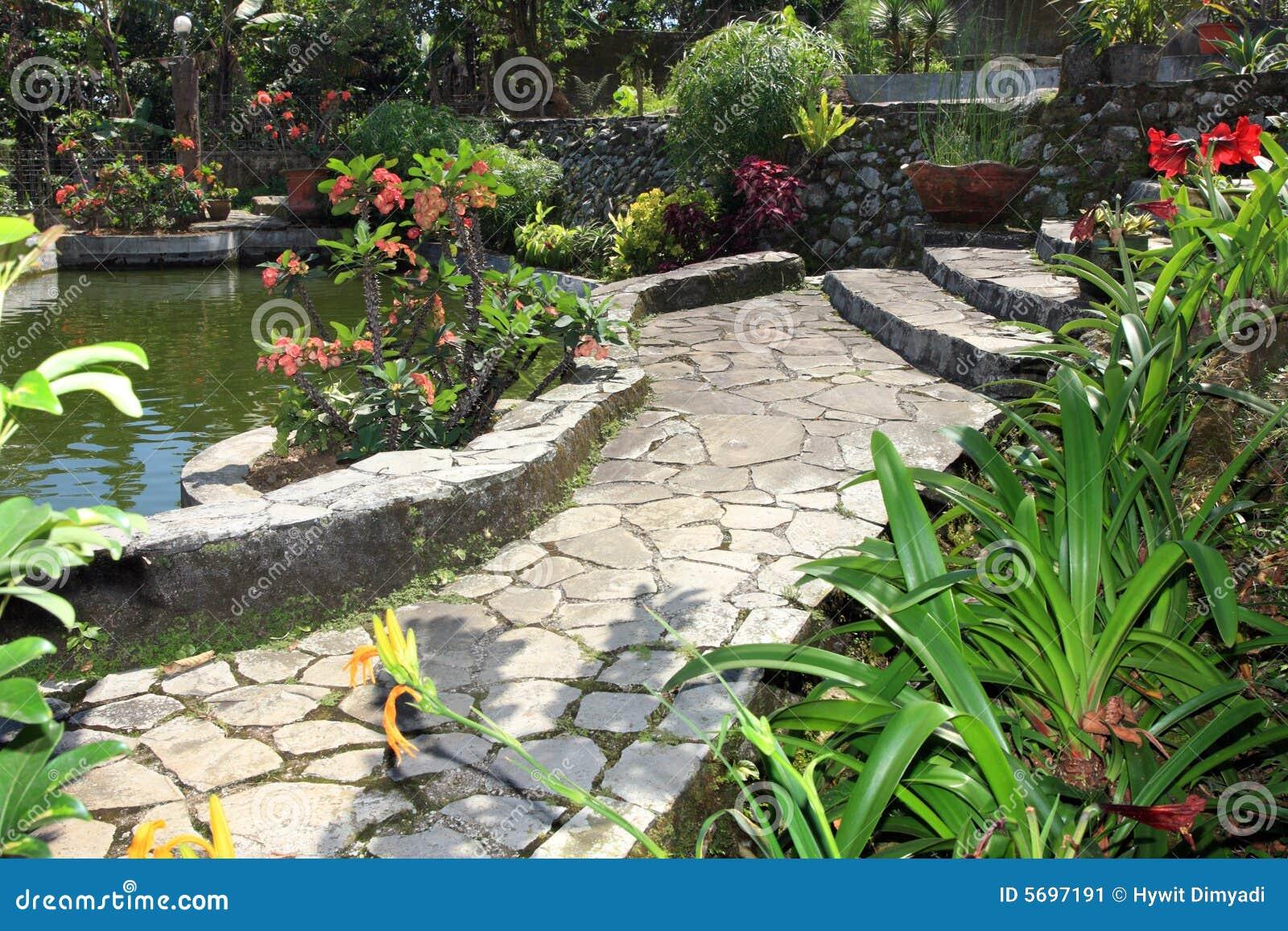 Natuurlijke tuin en vijver stock afbeelding afbeelding for Tuin en vijver