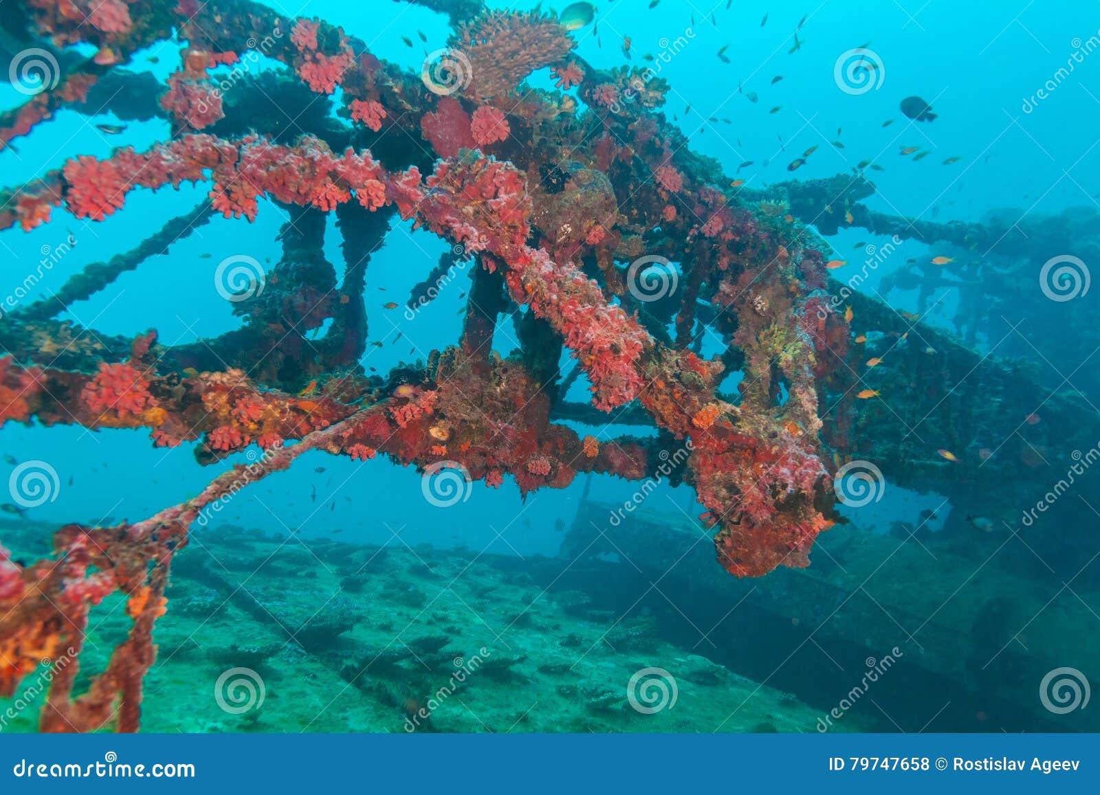 Naufrágio no azul de oceano, Maldivas