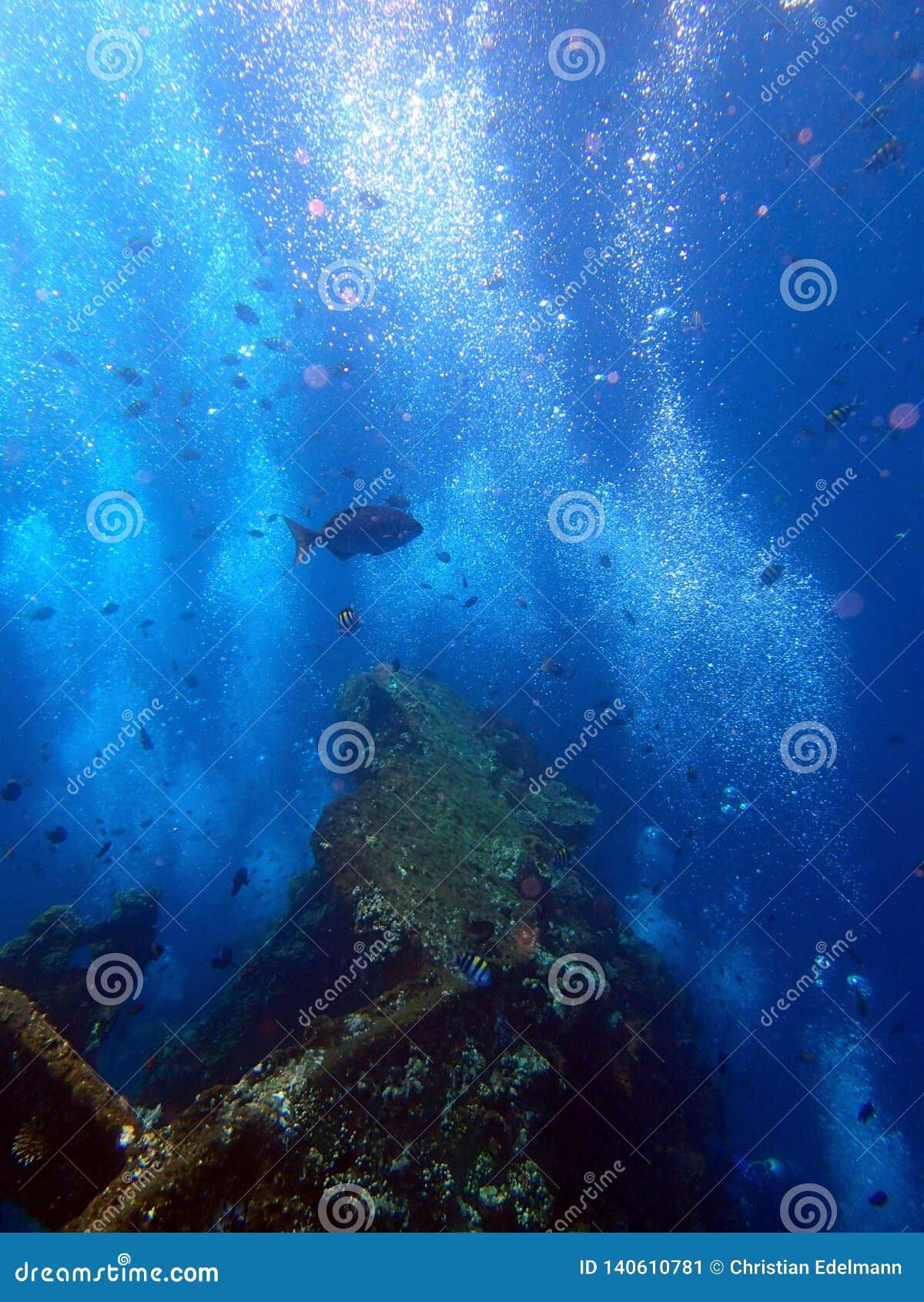 Naufragio USS Liberty con muchas burbujas del buceador - Bali Indonesia Asia