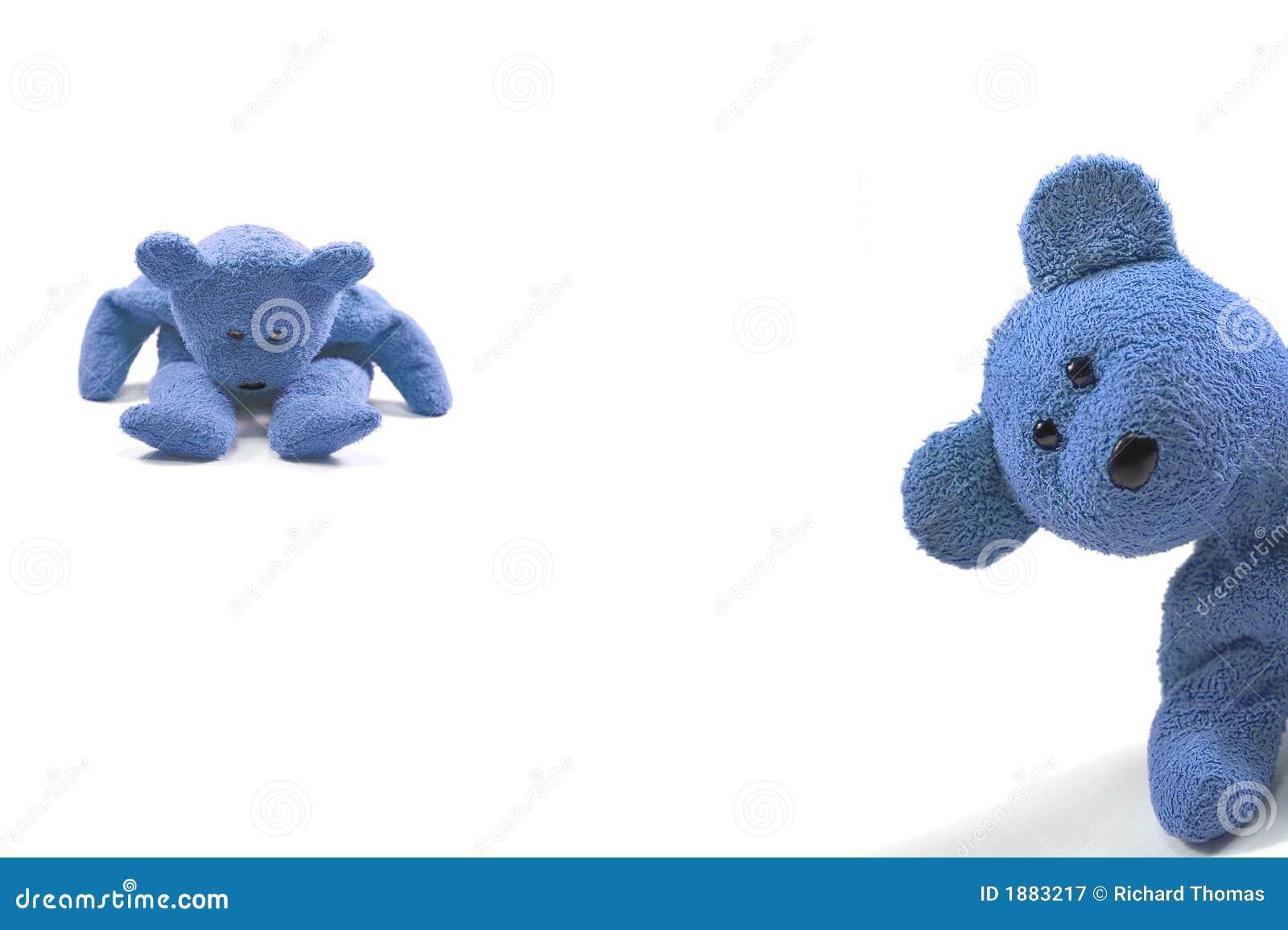 Naught boy bears