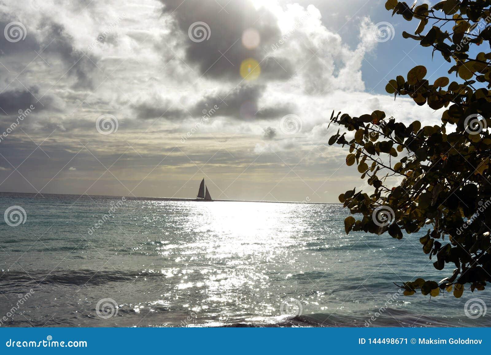 Navigação do veleiro no oceano no por do sol