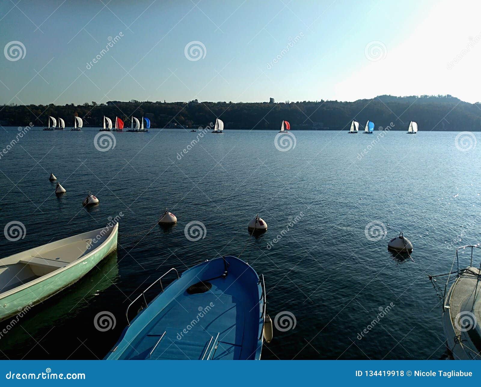 Navigation des yachts sous de pleines voiles à la régate Concurrence de plaisance d équipe
