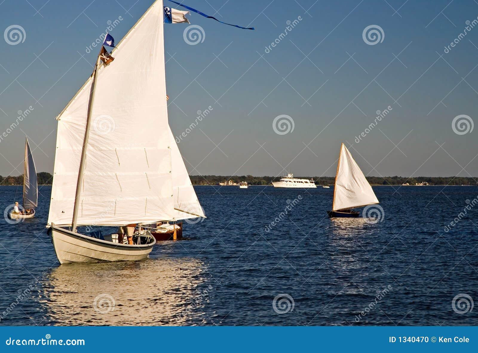 Navigazione delle bonite sulla baia di Chesapeake