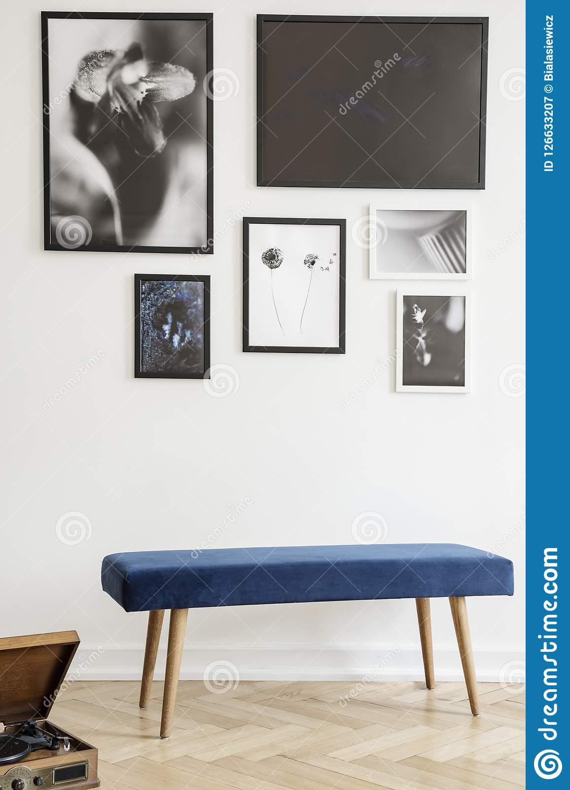 navy blue bench against white wall gallery posters living room interior real photo navy blue bench against white wall