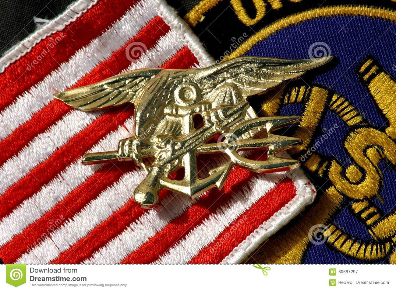 Navy seals insignia trident stock image image of trident navy seals insignia trident biocorpaavc